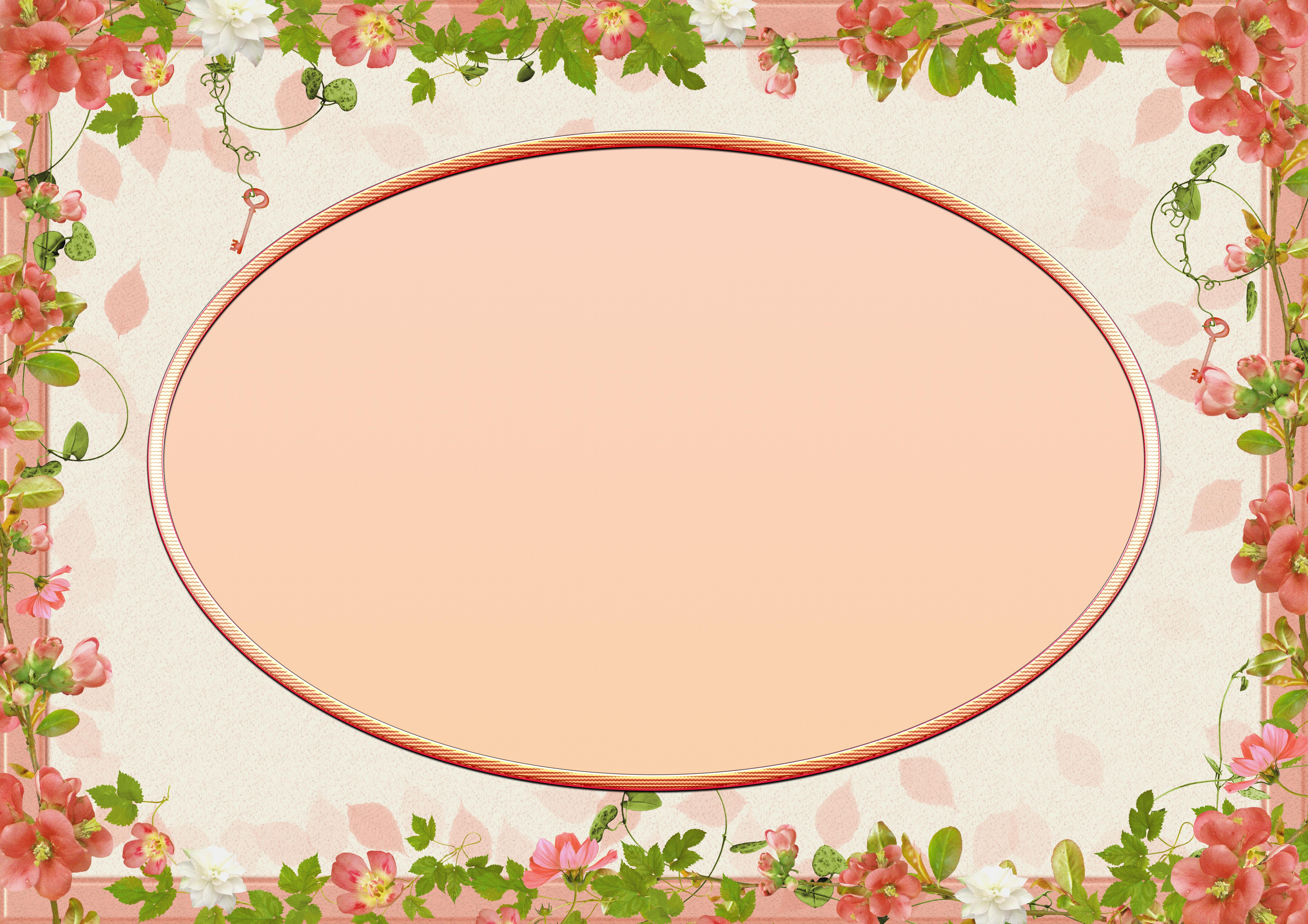 Gambar Bunga Bunga Flower Frame Kosong Ruang Teks Ceria