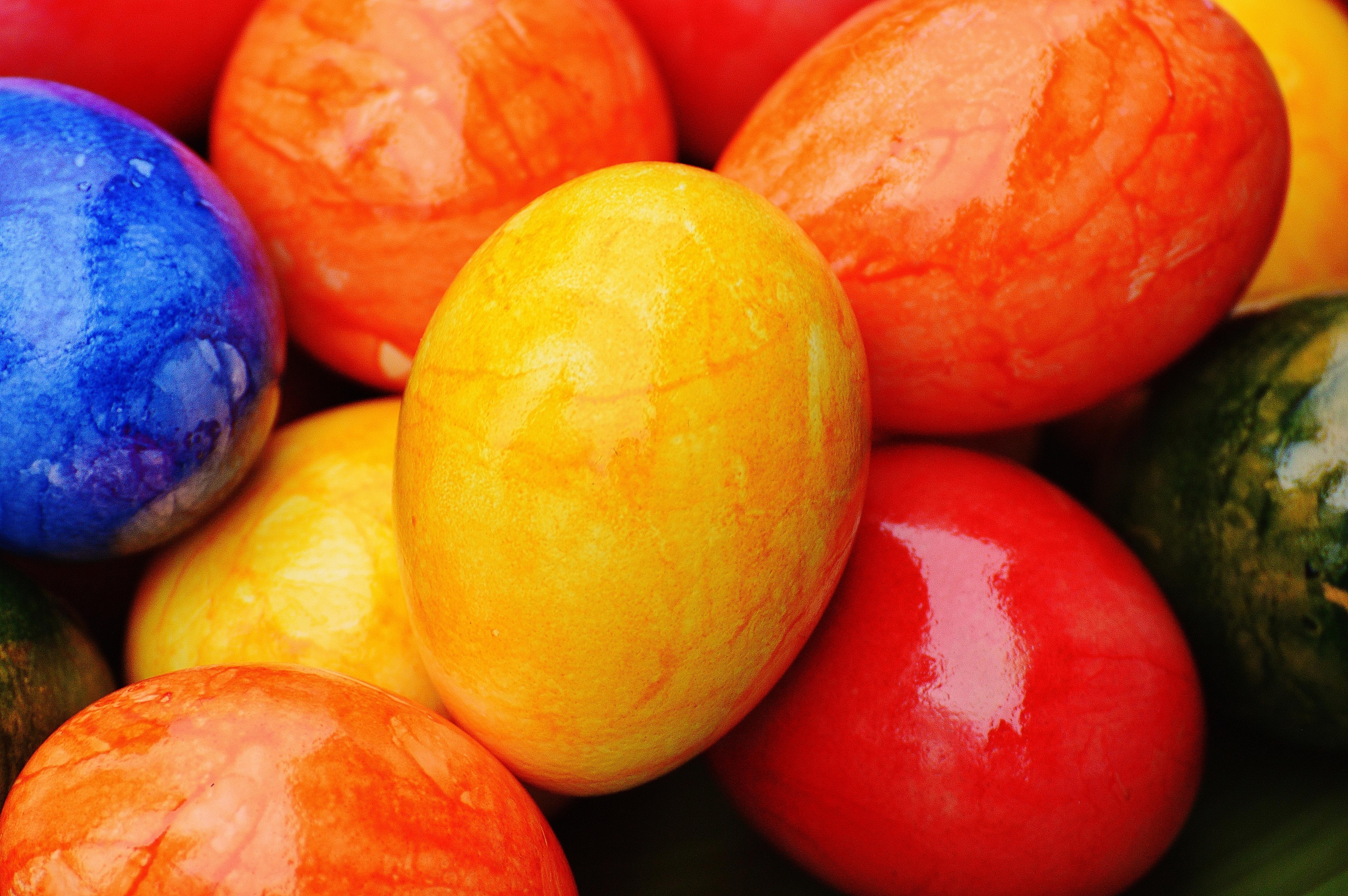 Fotoğraf Meyve Tabak Gıda üretmek Renk Renkli Mutfak