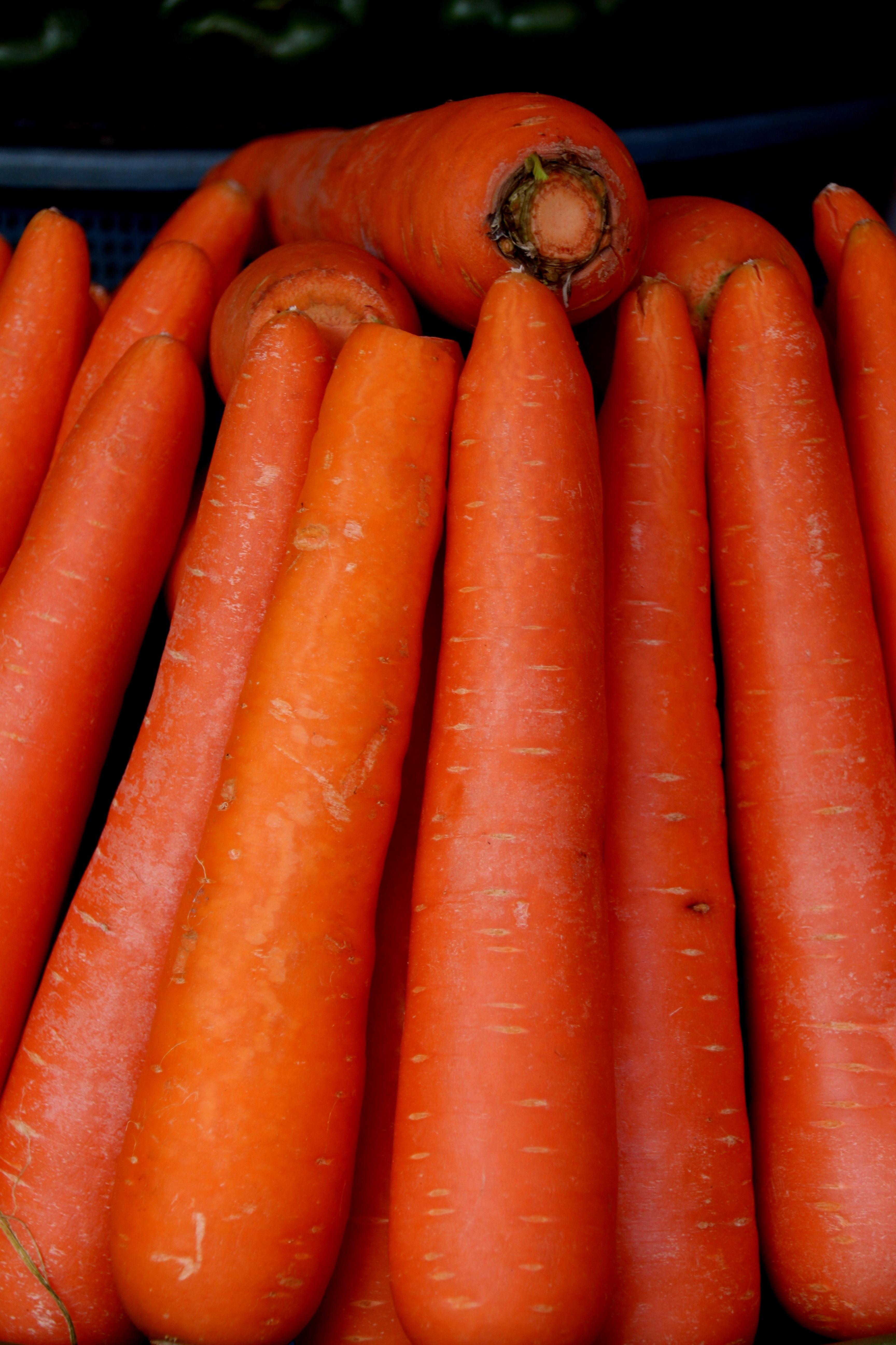 Анимации днем, картинки моркови
