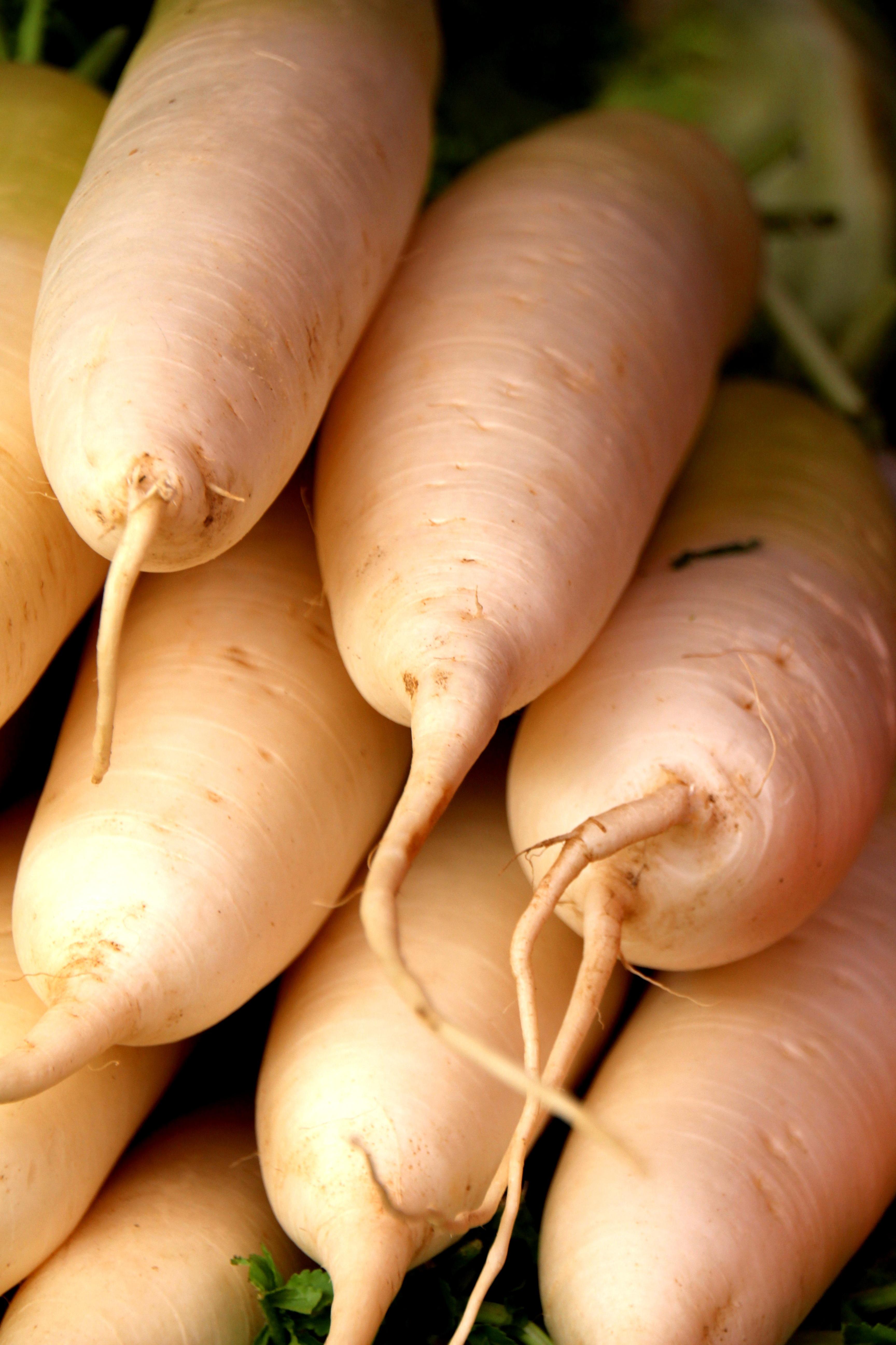 Fotoğraf Meyve Gıda Mutfak üretmek Sebze Renkli Boyama Turp