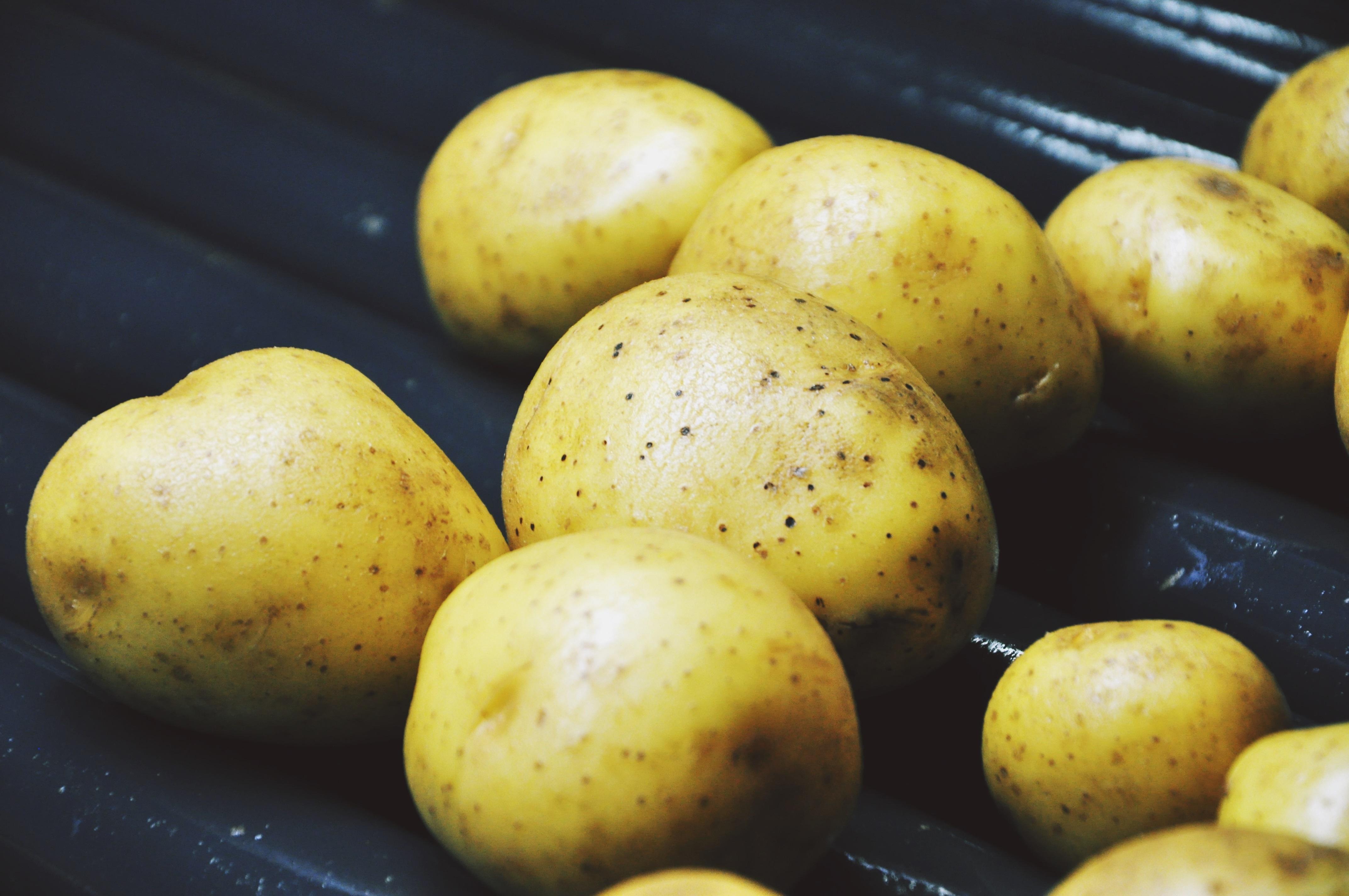 Kartoffel Bilder Kostenlos kostenlose foto frucht lebensmittel produzieren gemüse waschen
