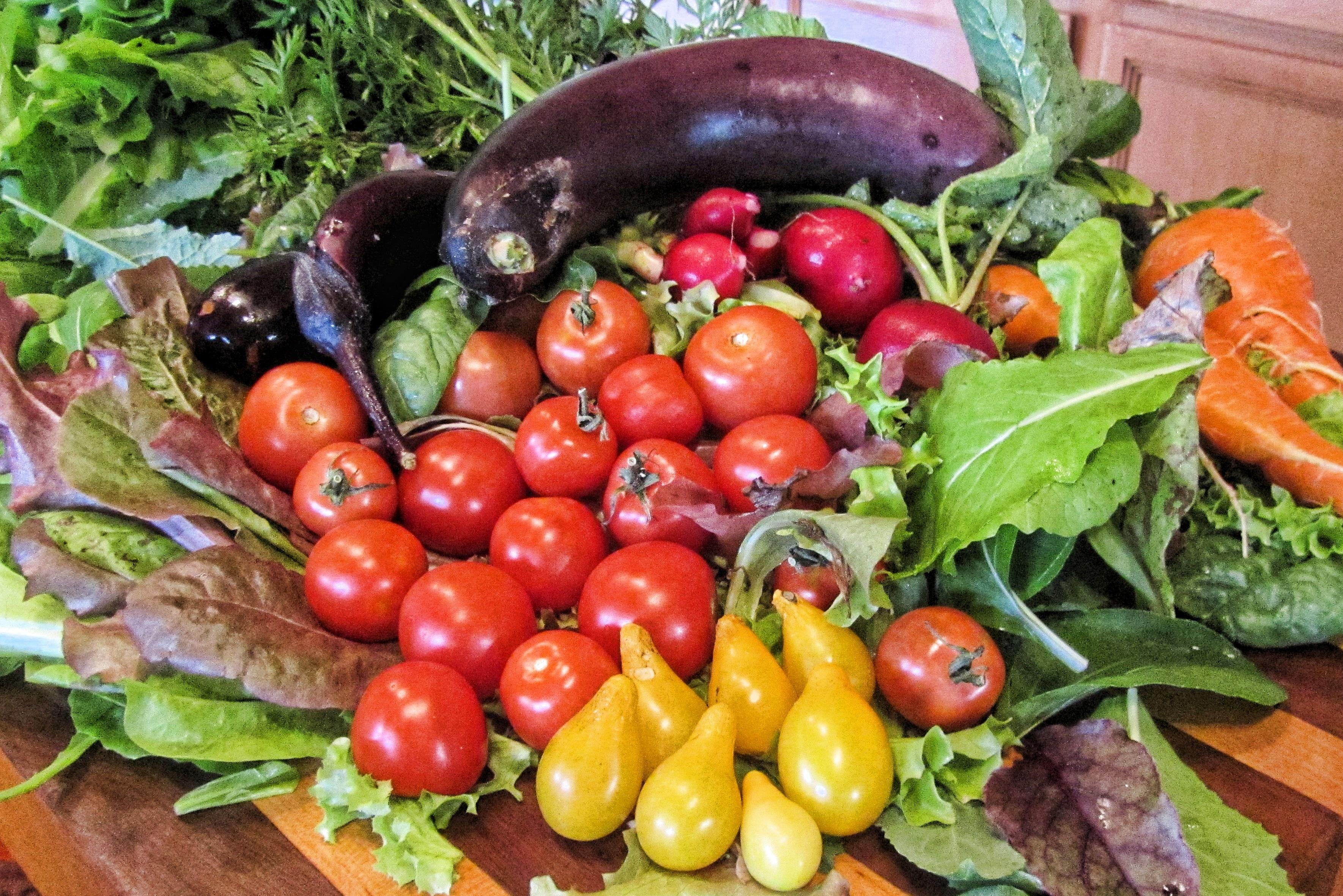 Free Images : fruit, leaf, meal, salad, green, mediterranean