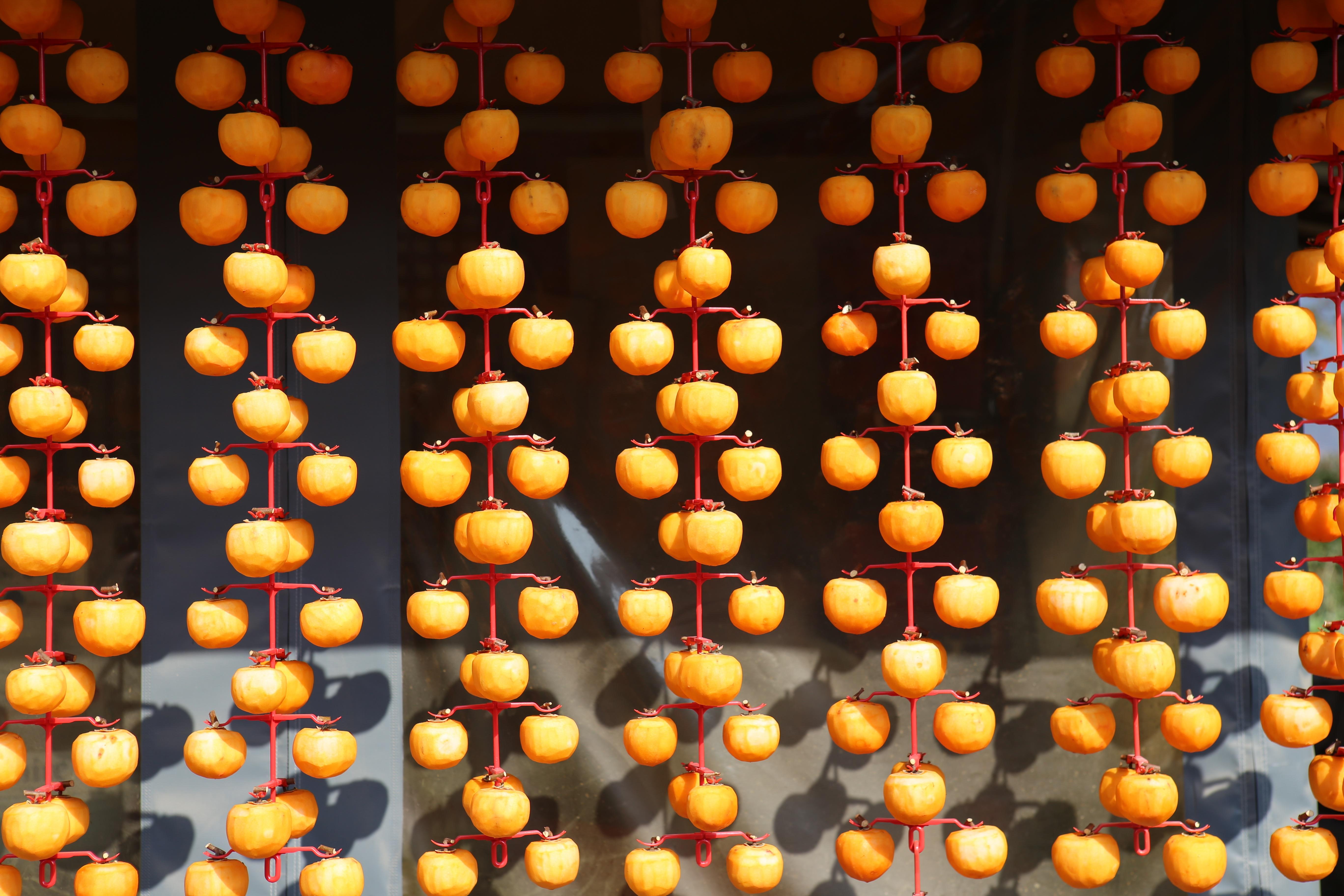 fruit orange pattern yellow font persimmon dried persimmon computer wallpaper hahoe village 1373547