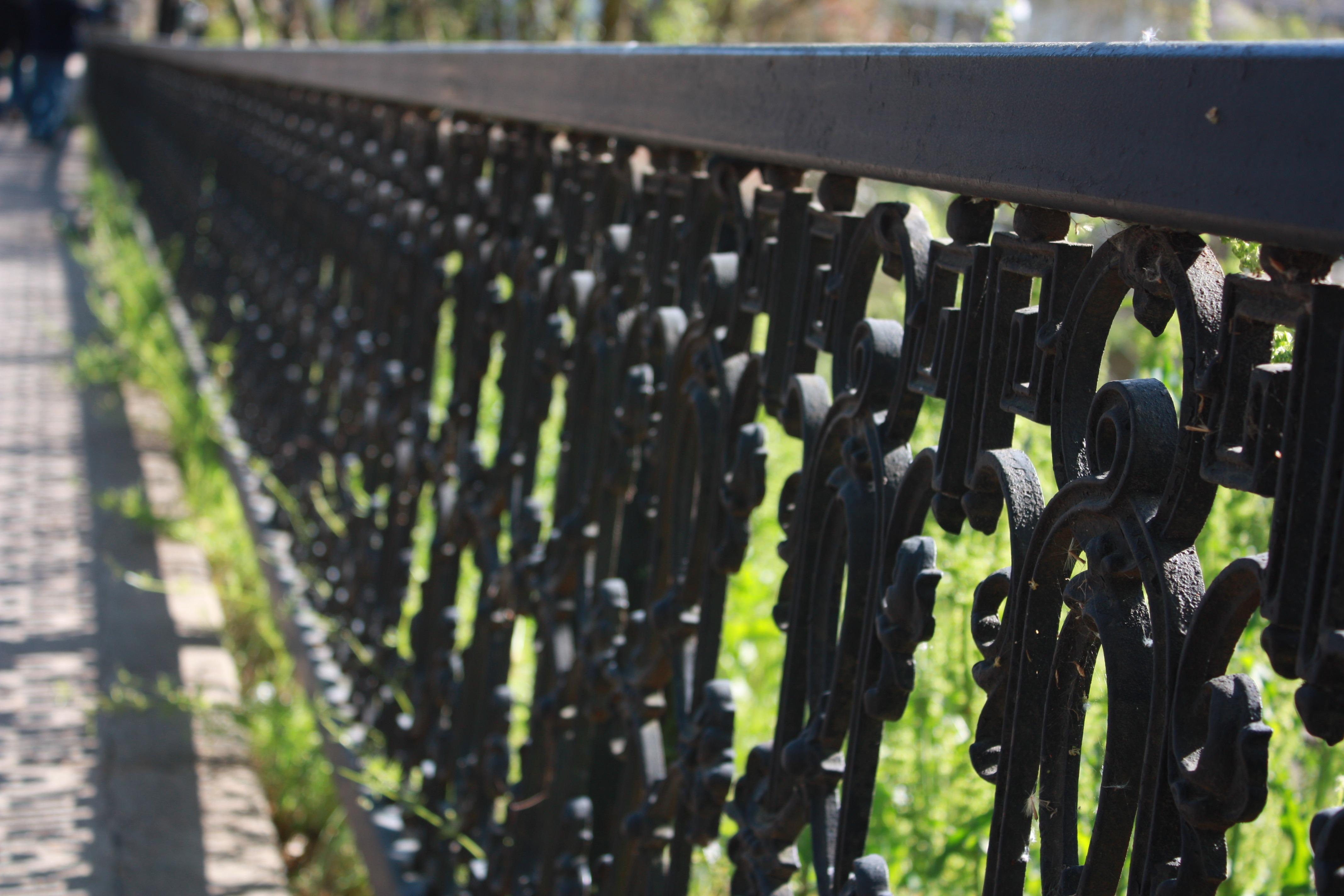 free images grass fence antique leaf steel green metal