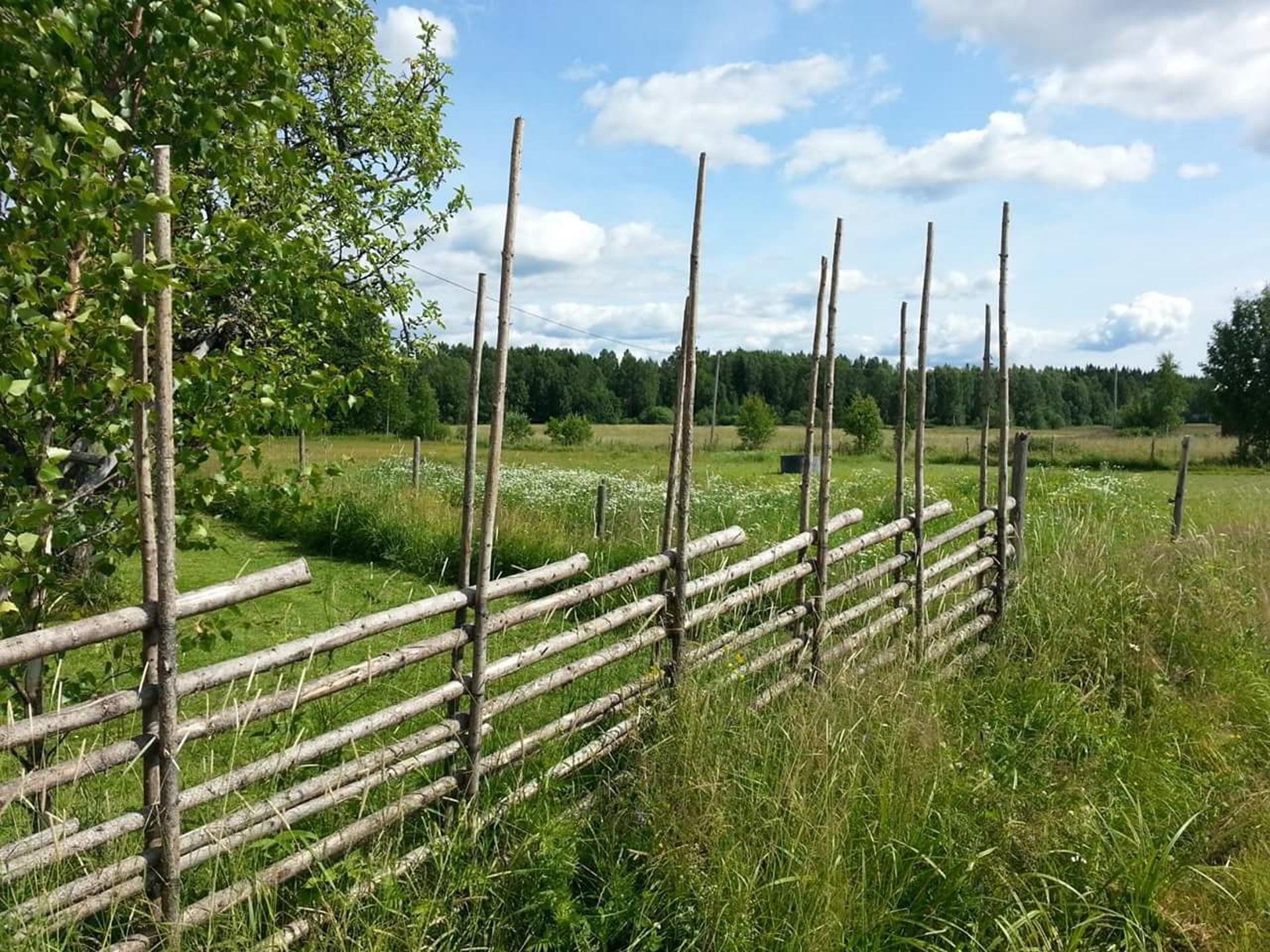 Kostenlose foto : Gras, Feld, Bauernhof, Rasen, Weide, Boden ...