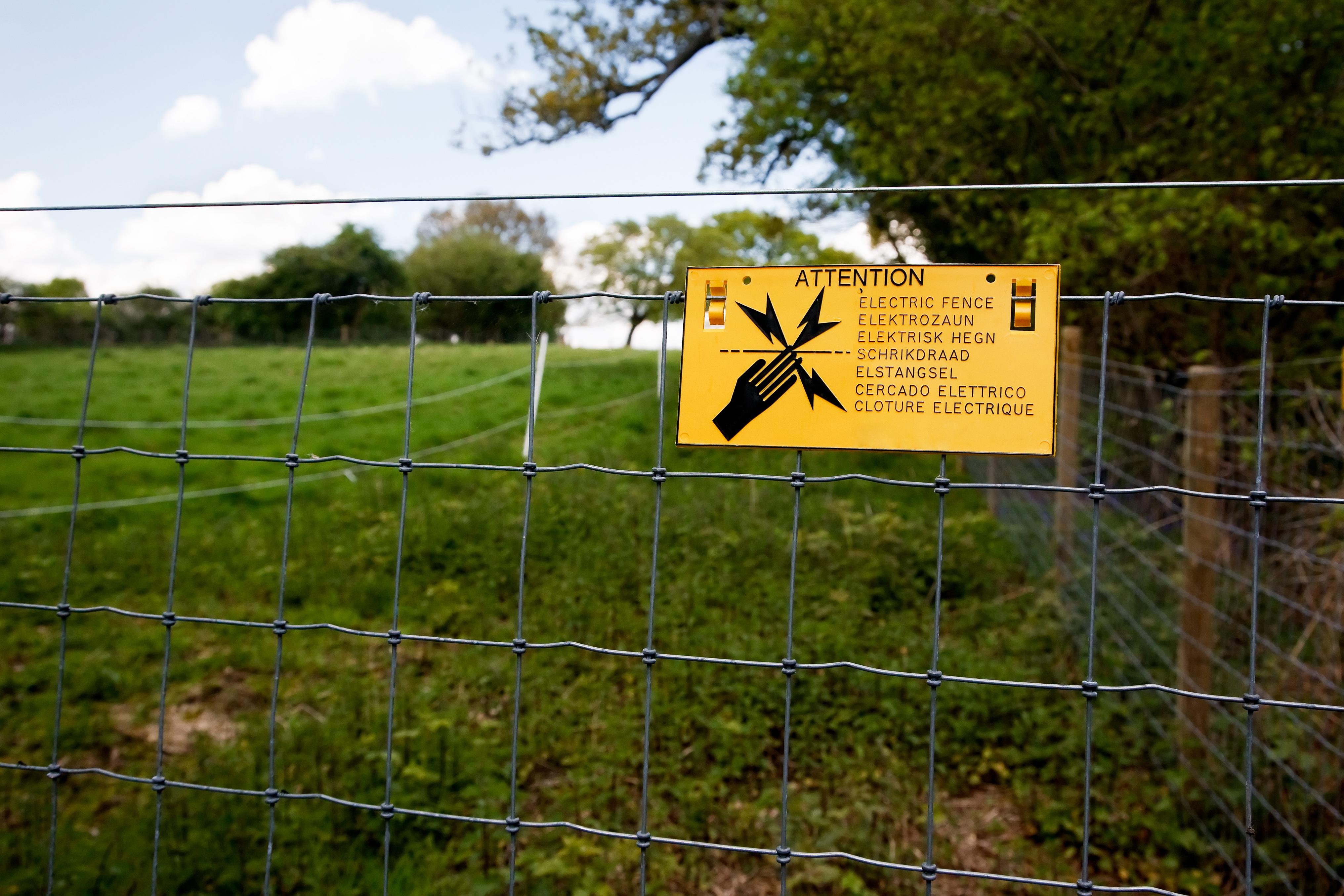 Rumput Pagar Bidang Tanah Pertanian Padang Pedesaan Kawat Tanda Hijau Elektris Listrik