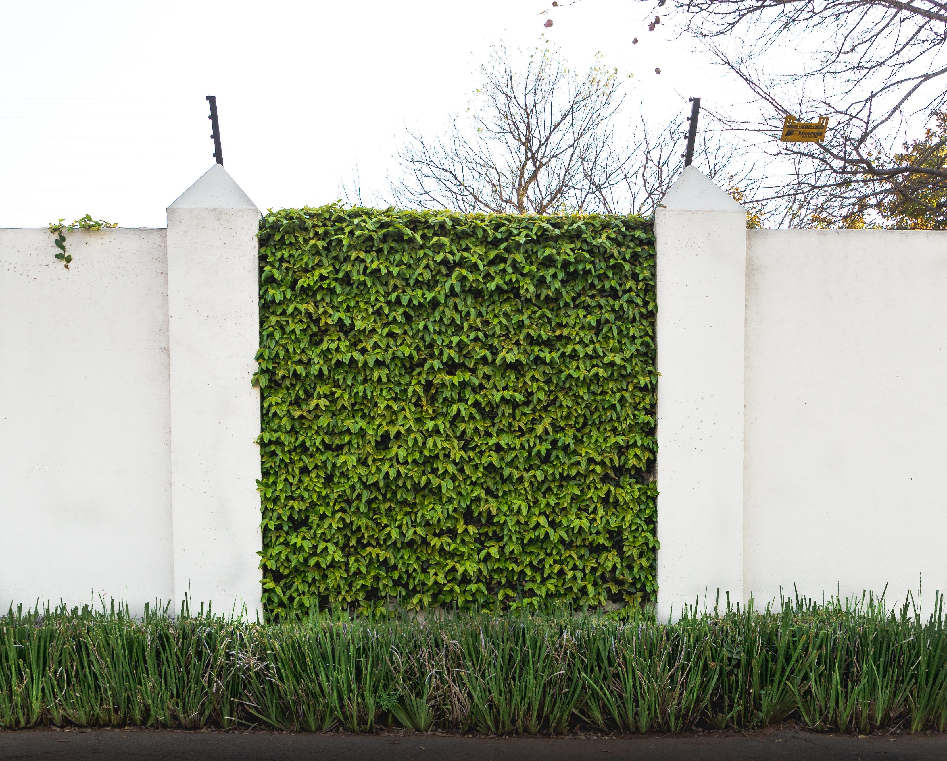 Images gratuites herbe pelouse mur vert fa ade for Agrandissement maison zone verte