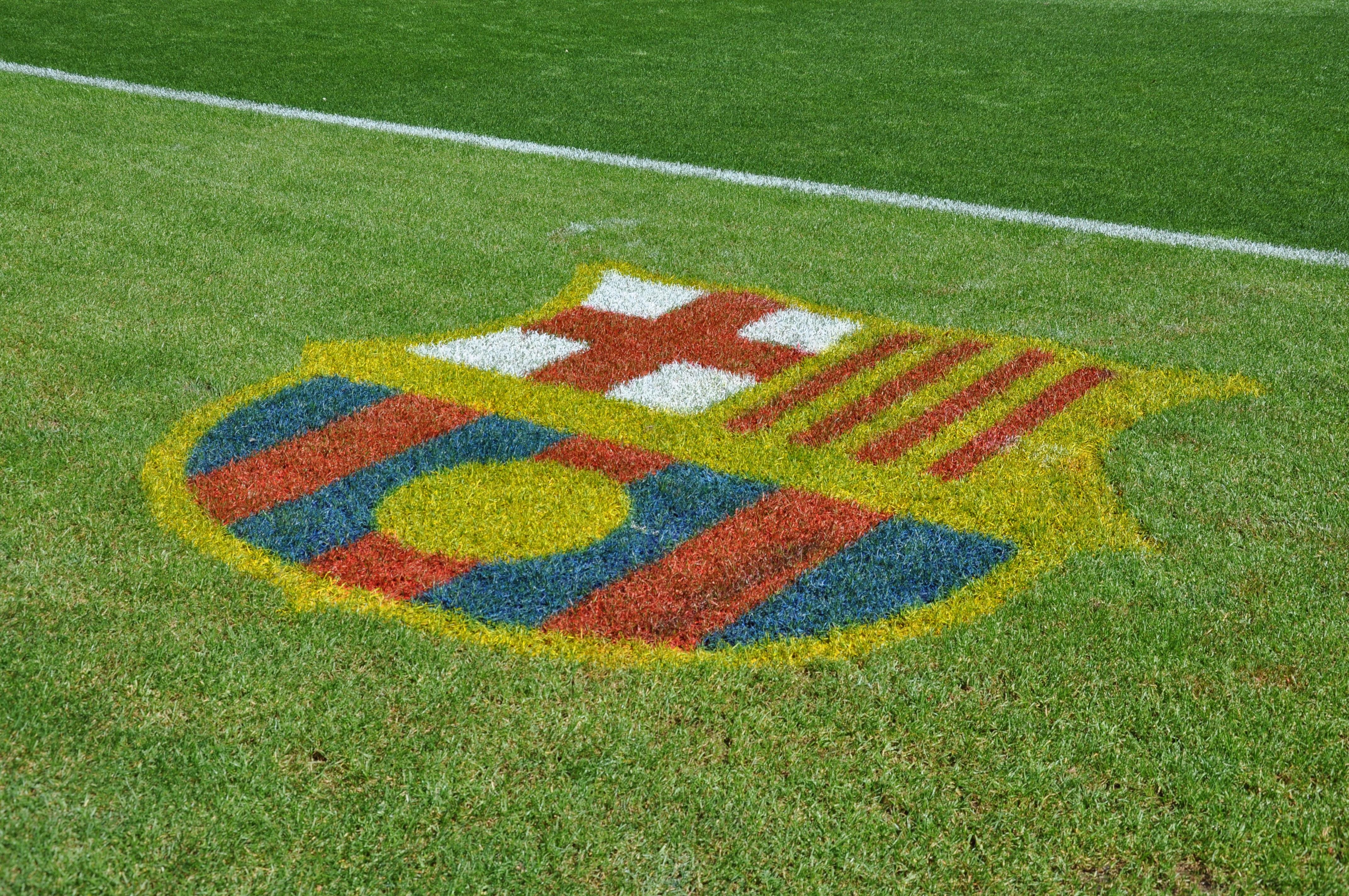 Gambar Bidang Halaman Rumput Garis Sepak Bola Barcelona