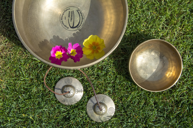 Inspirierend Alternative Zu Rasen Das Beste Von Gras Blume Glas Grün Produzieren Energie Energie