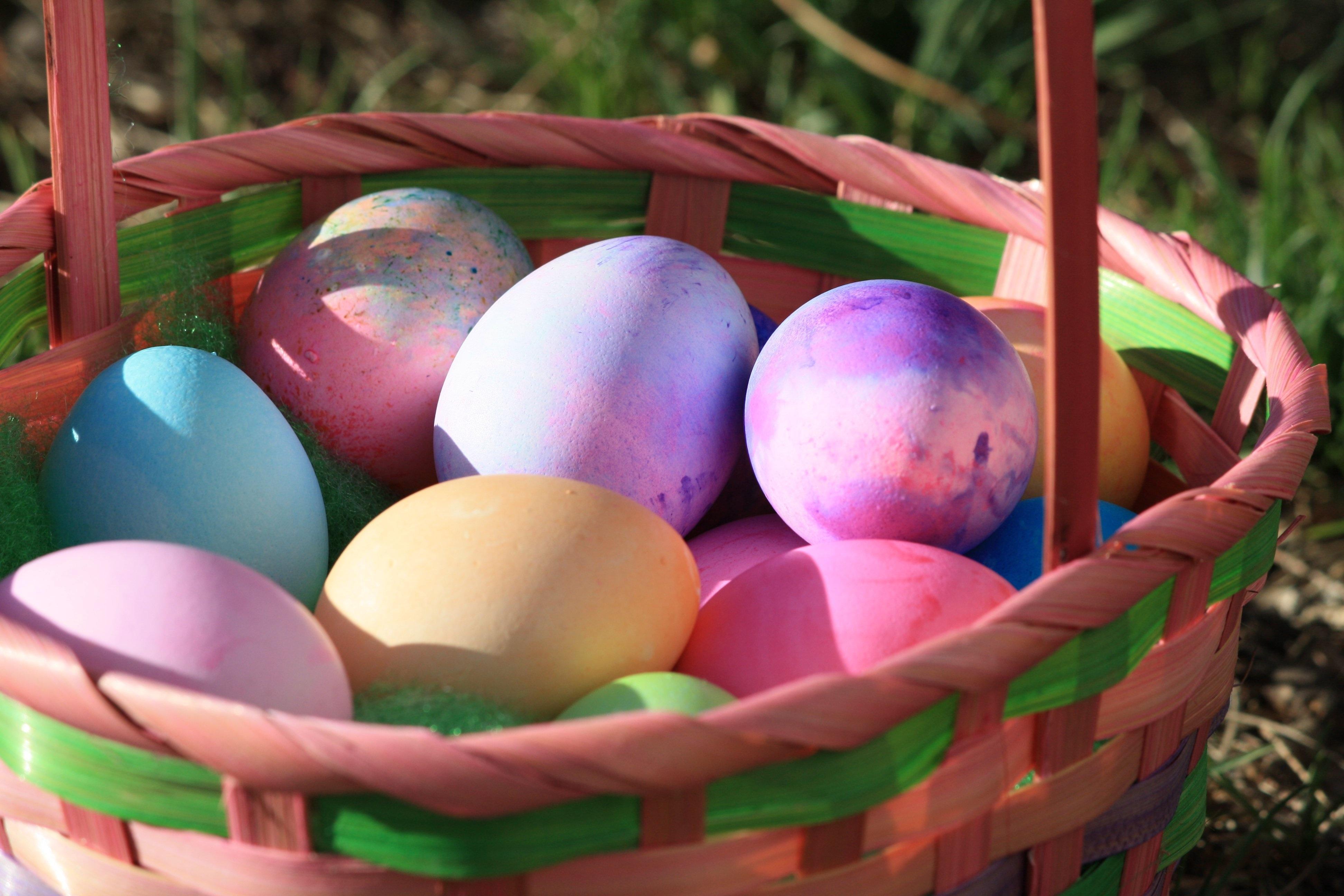 Fotoğraf çimen Gıda Bahar Renk Bahçe Sepet Hasır Sepet