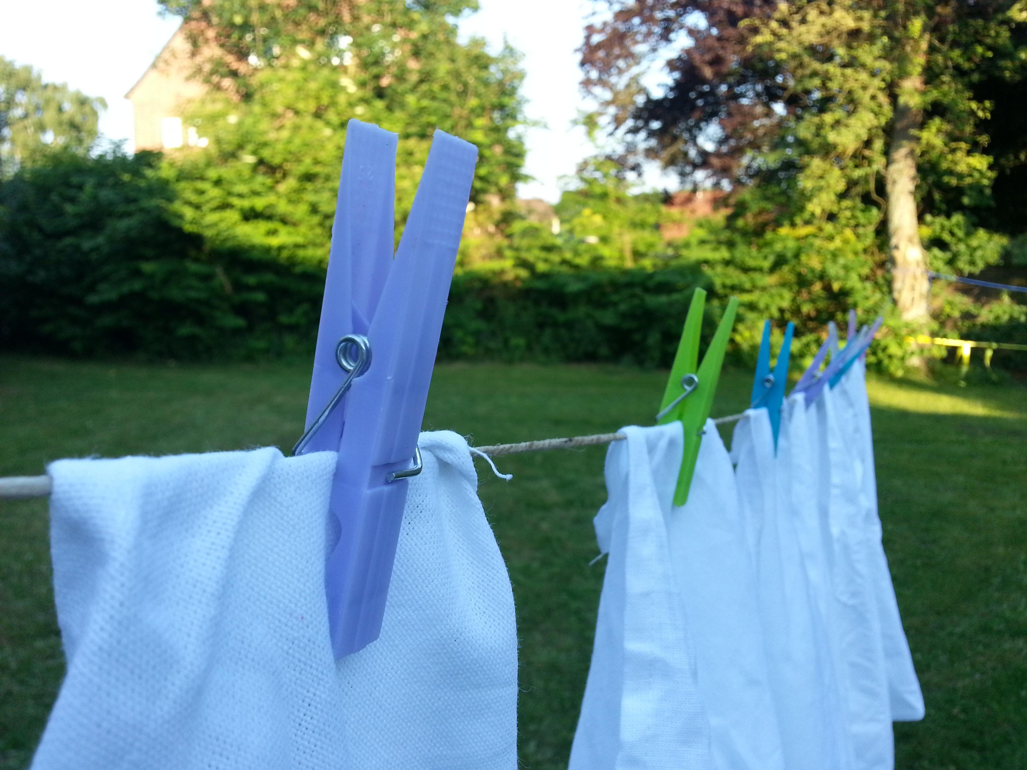Gambar Halaman Rumput Kering Halaman Belakang Mencuci Biru