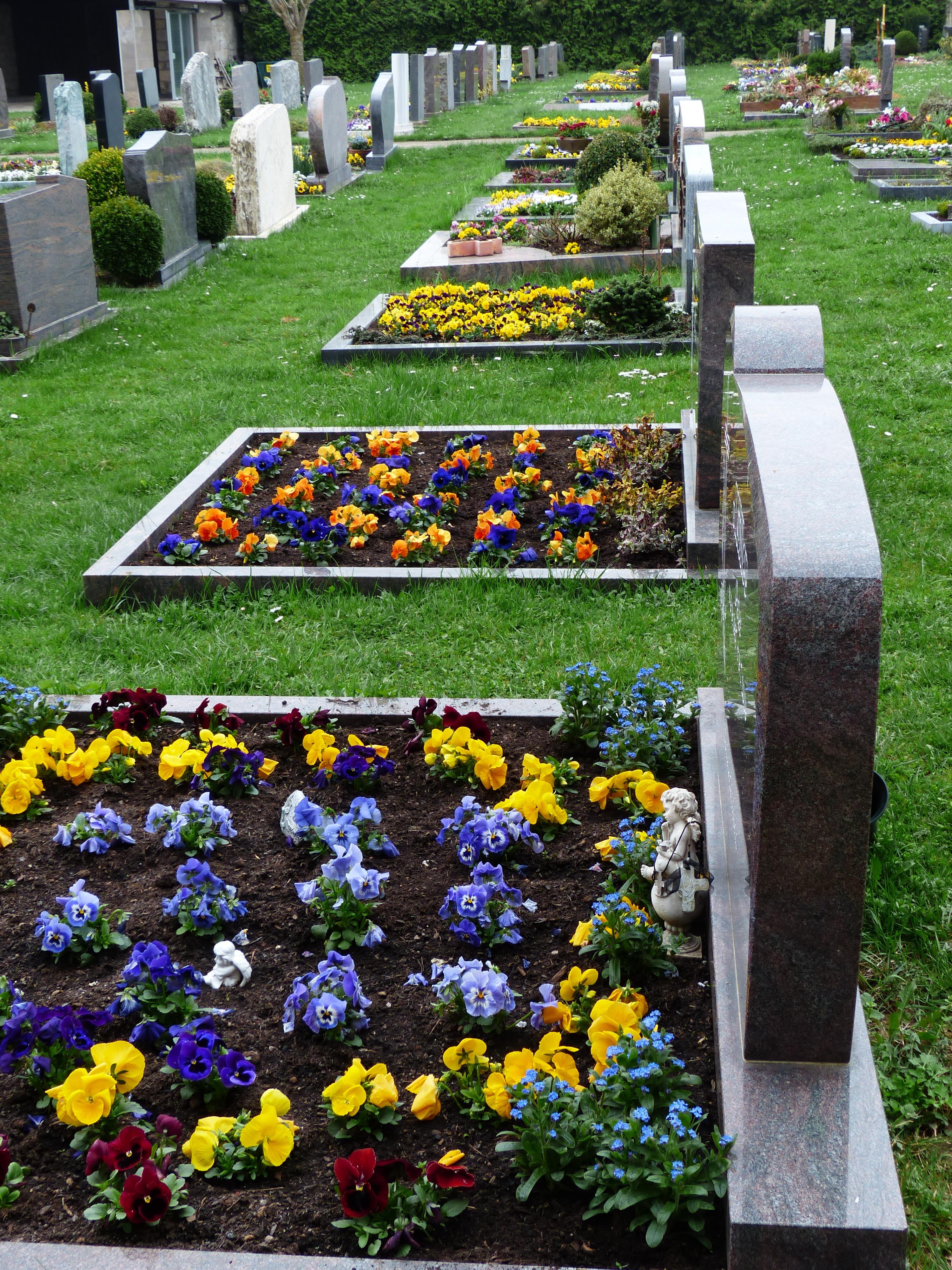 Fotos gratis c sped flor patio interior bot nica for Cementerio jardin memorial