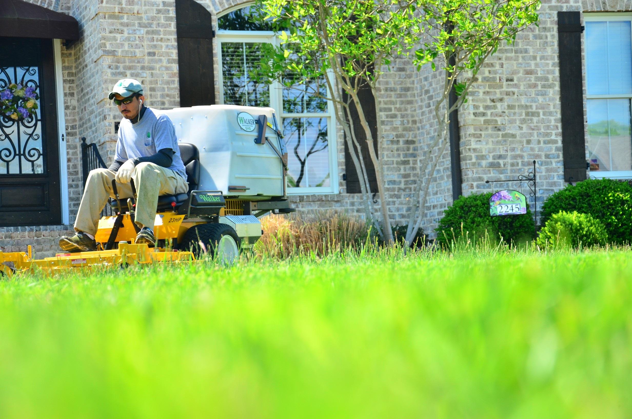 Elegant Grass Lawn Flower Home Green Backyard Garden Yard Lawn Mowing Lawn Care  Lawn Maintenance Lawn Services