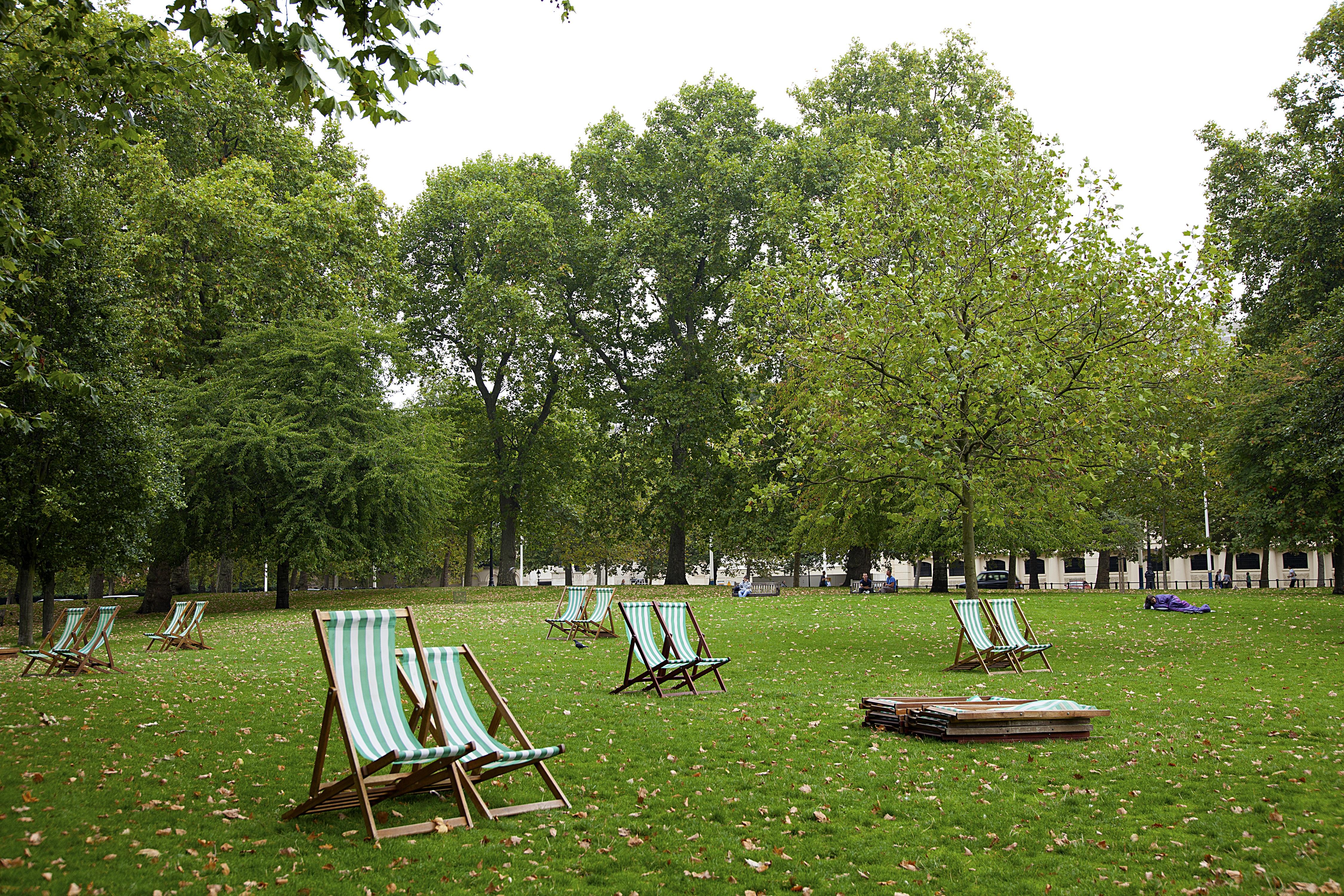 Free grass lawn meadow chair green park backyard