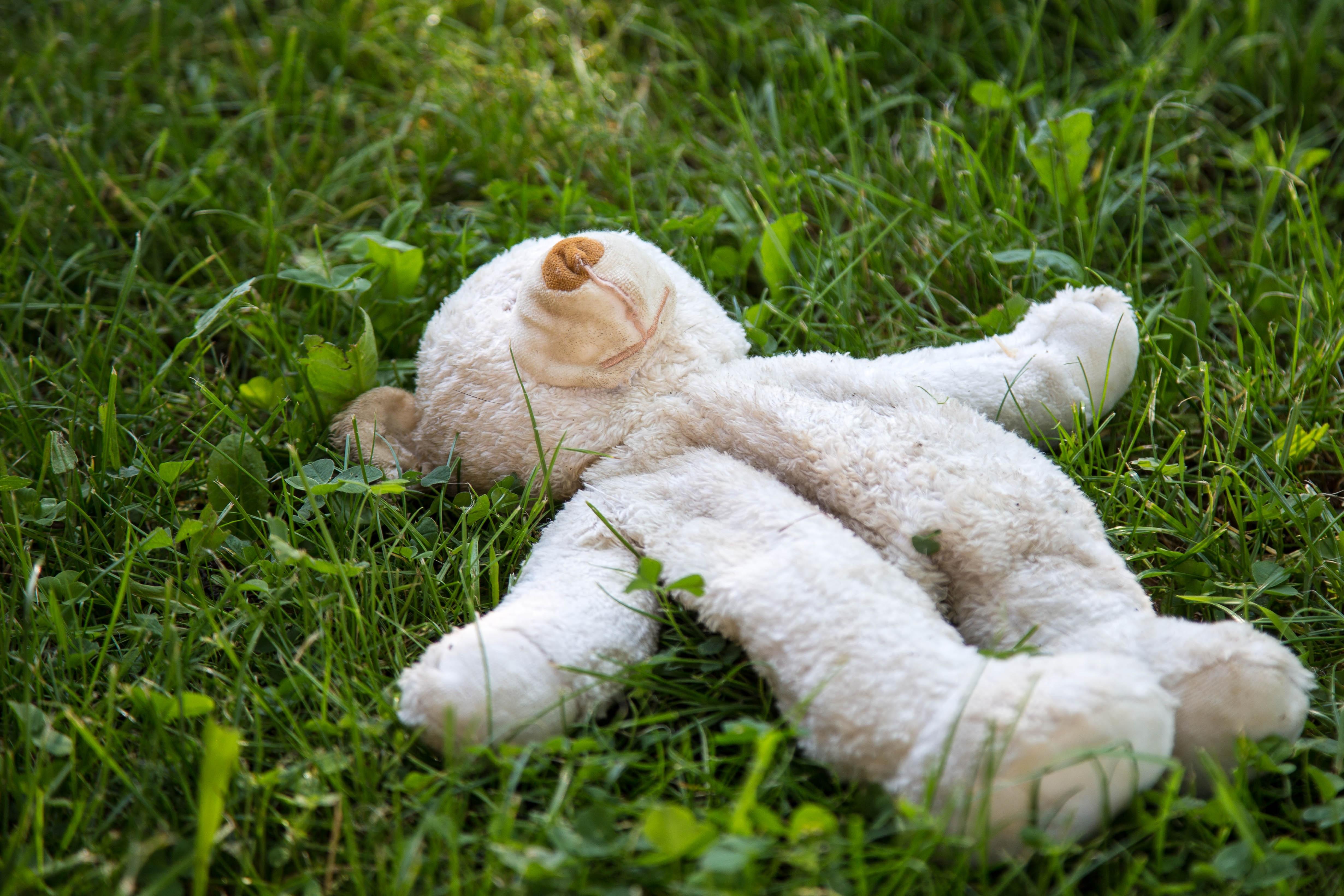 Cỏ Bãi Cỏ Đồng Cỏ Hoa Màu Xanh Lá Gấu Bông Đồ Chơi Sang Trọng Mờ
