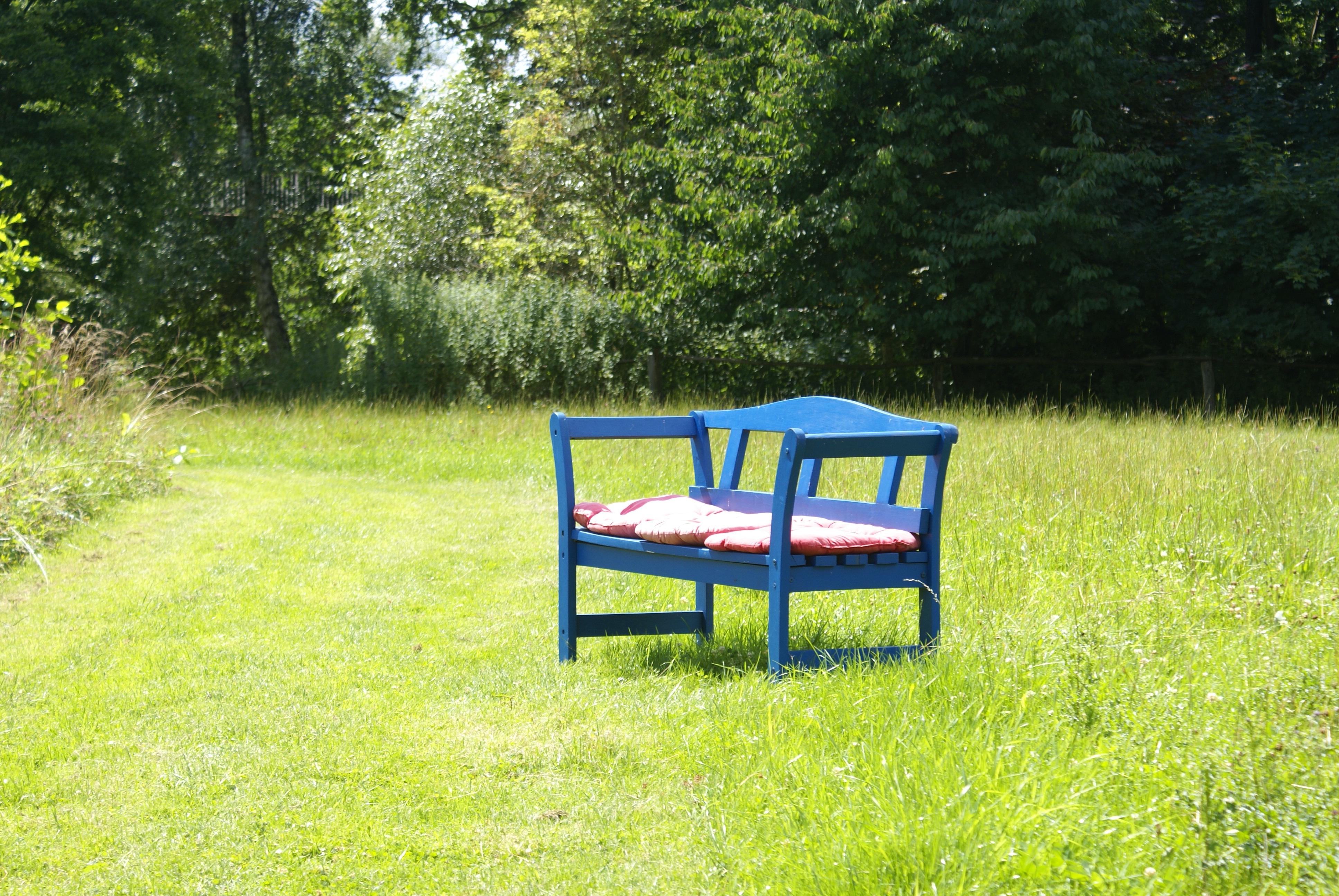Fotos gratis : césped, prado, verde, patio interior, mueble, jardín ...
