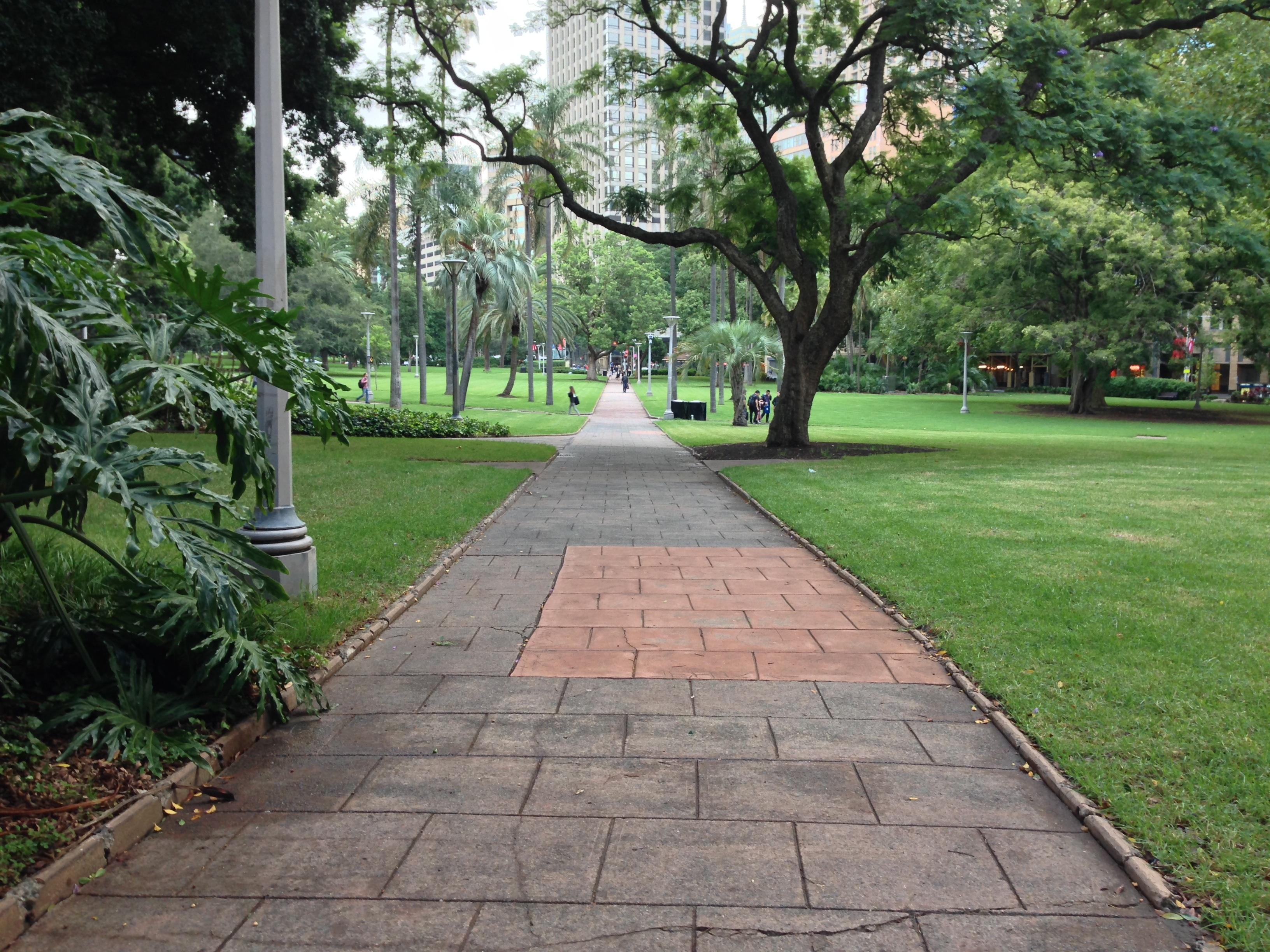 Paesaggista latest giardino natura cortile albero fiore cortile prato botanica arbusto giardino - Architetto arreda ...