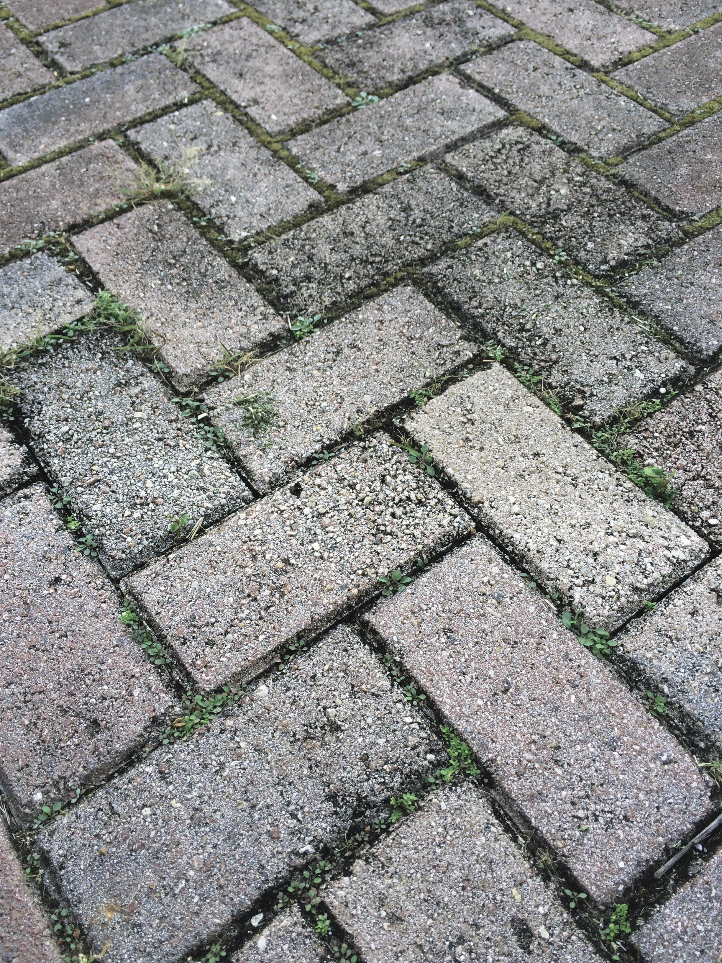 grass lawn sidewalk floor cobblestone wall asphalt walkway pattern soil stone wall brick lane material driveway