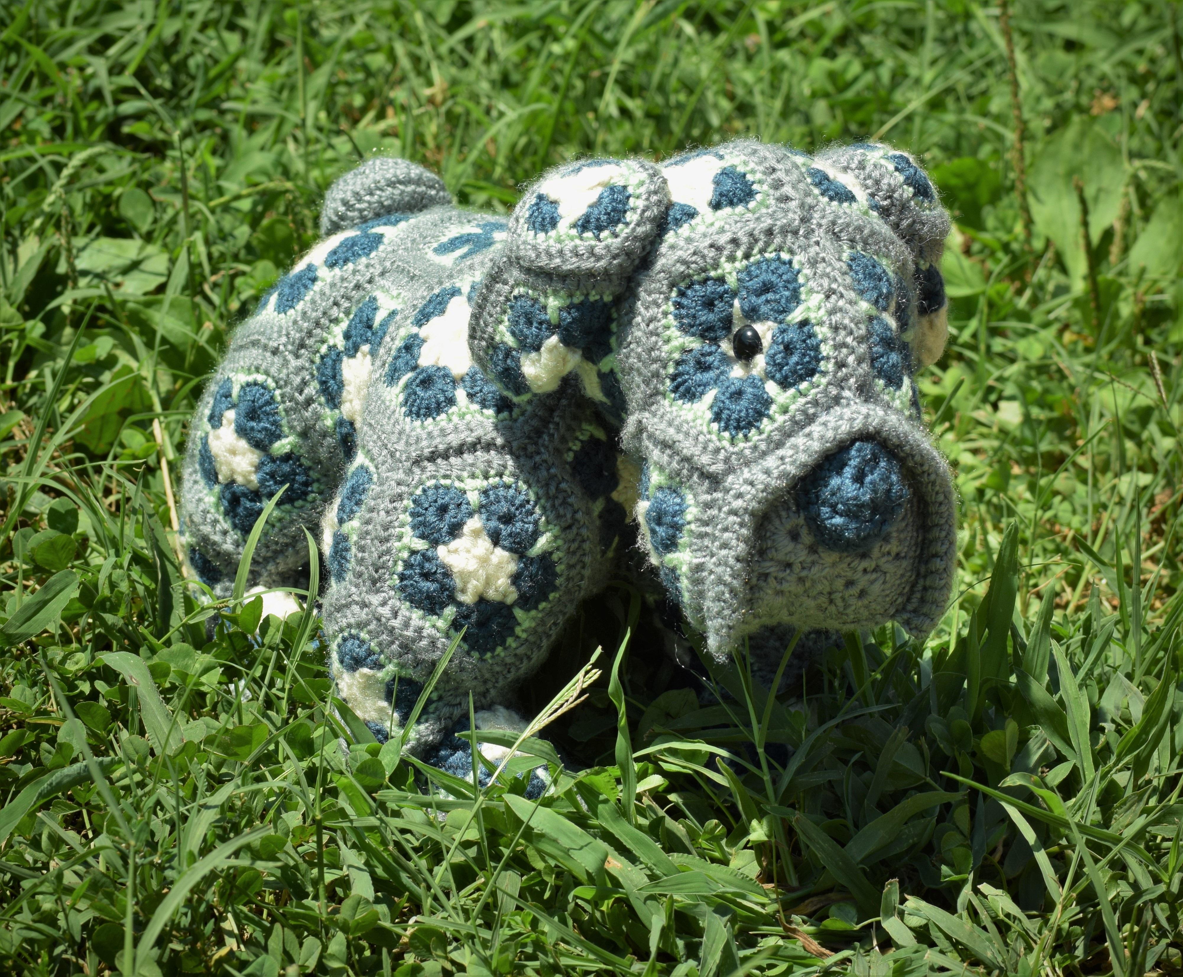 Gratis Afbeeldingen Gras Gazon Wildlife Patroon Schildpad