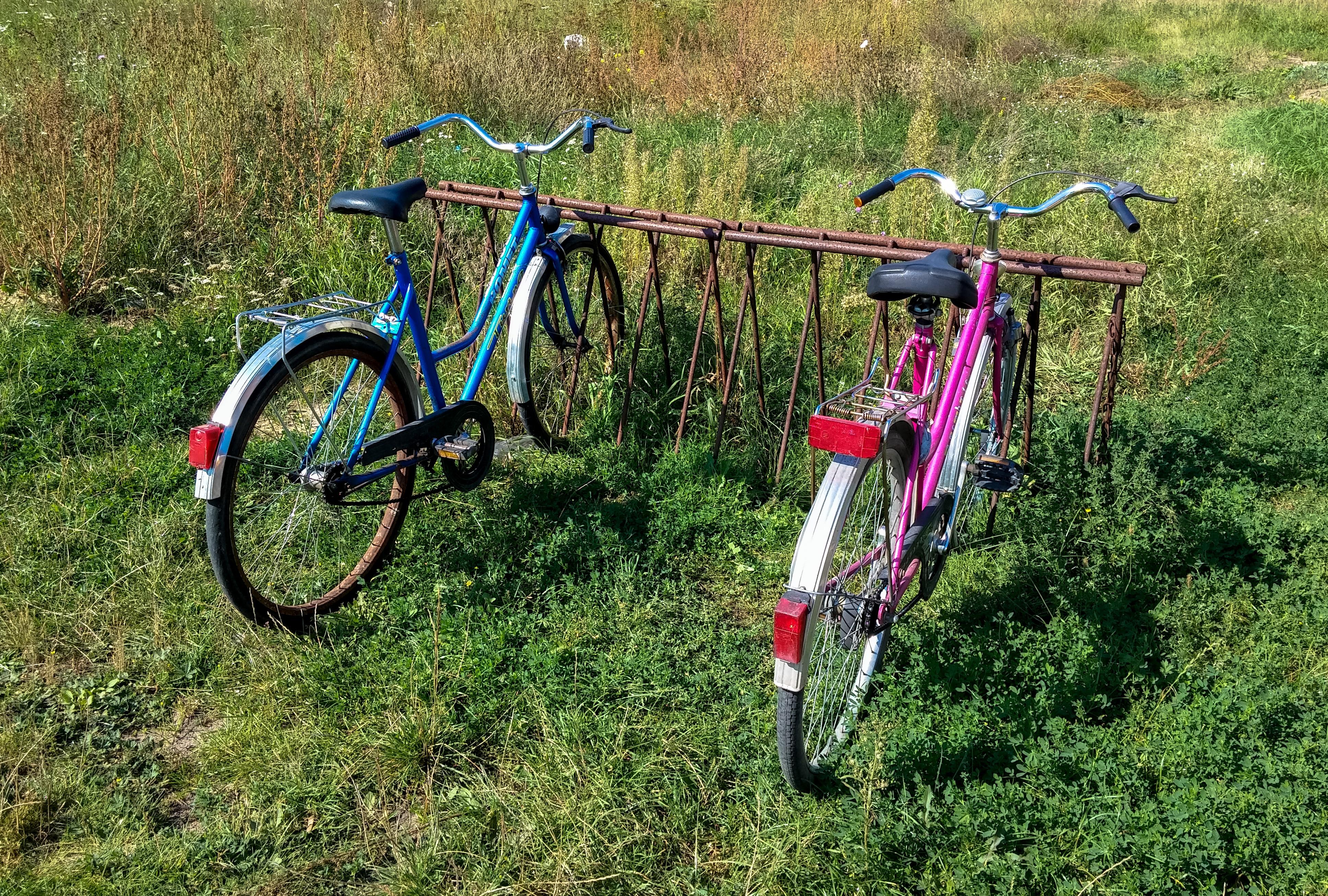 Kostenlose foto : Gras, alt, Fahrzeug, Urlaub, Boden, blau, Gestell ...