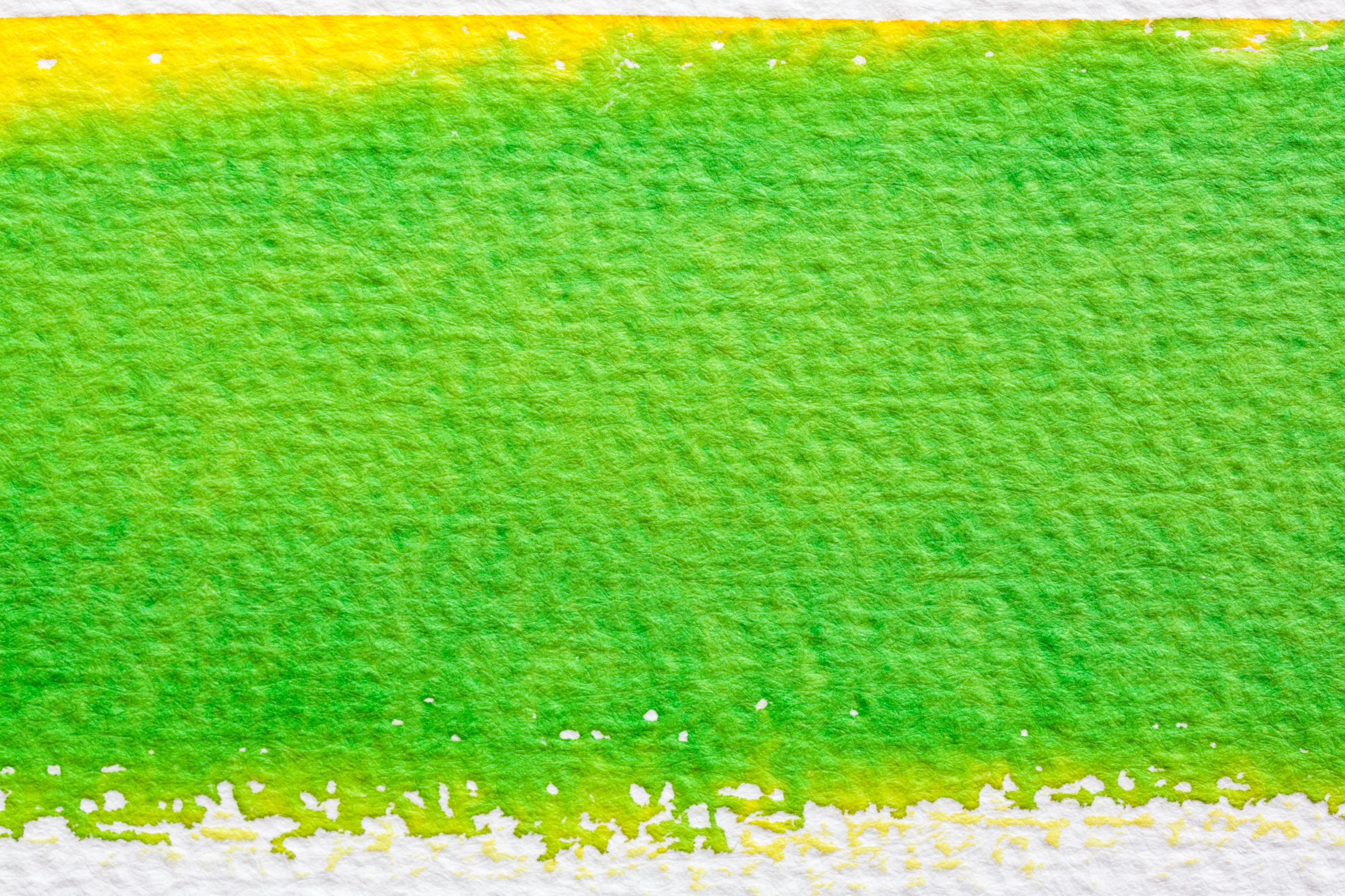 Fotos gratis planta campo primavera verde sereno amarillo