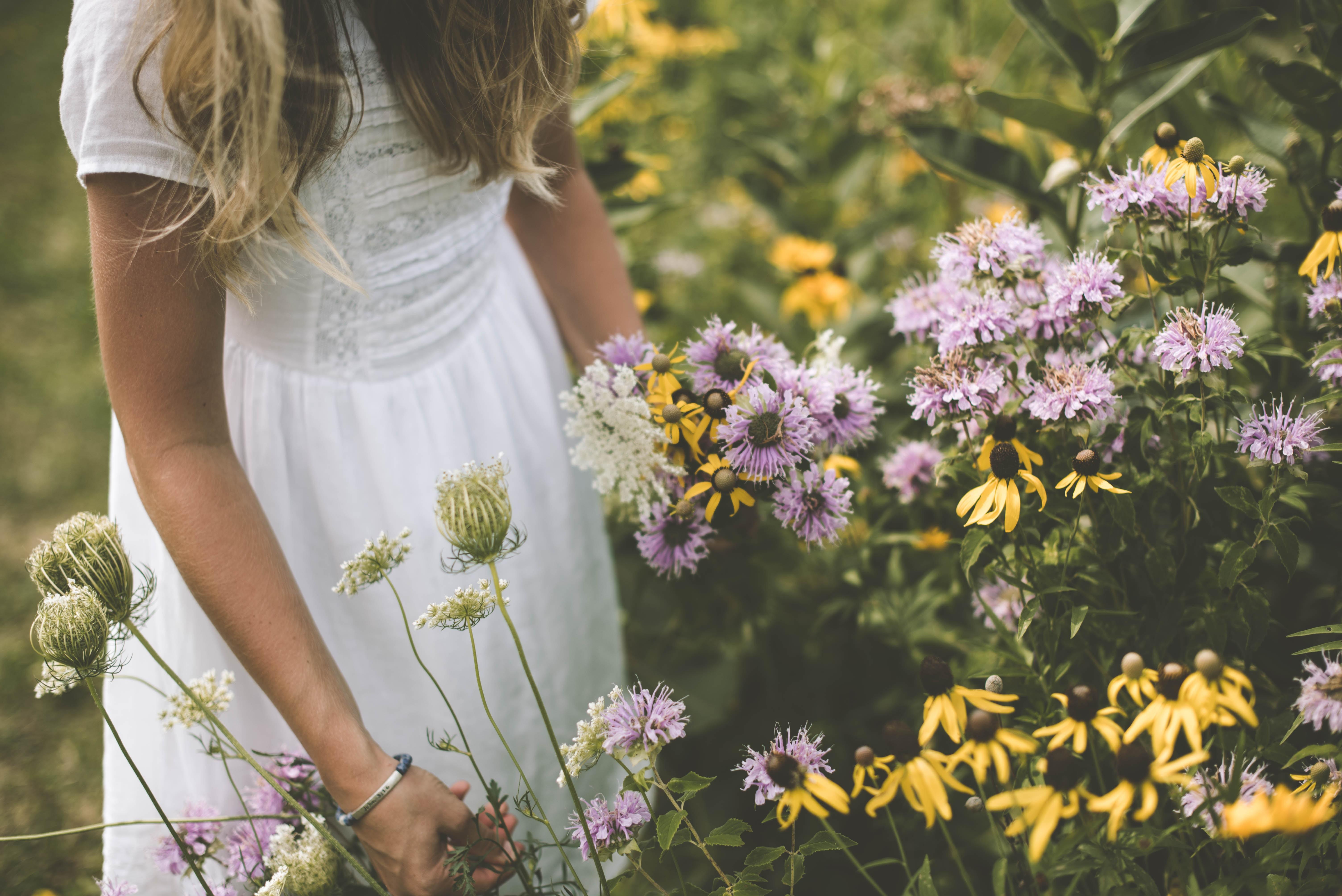 Images Gratuites Herbe Fille Prairie Fleur Violet T Printemps Jaune Jardin Mariage