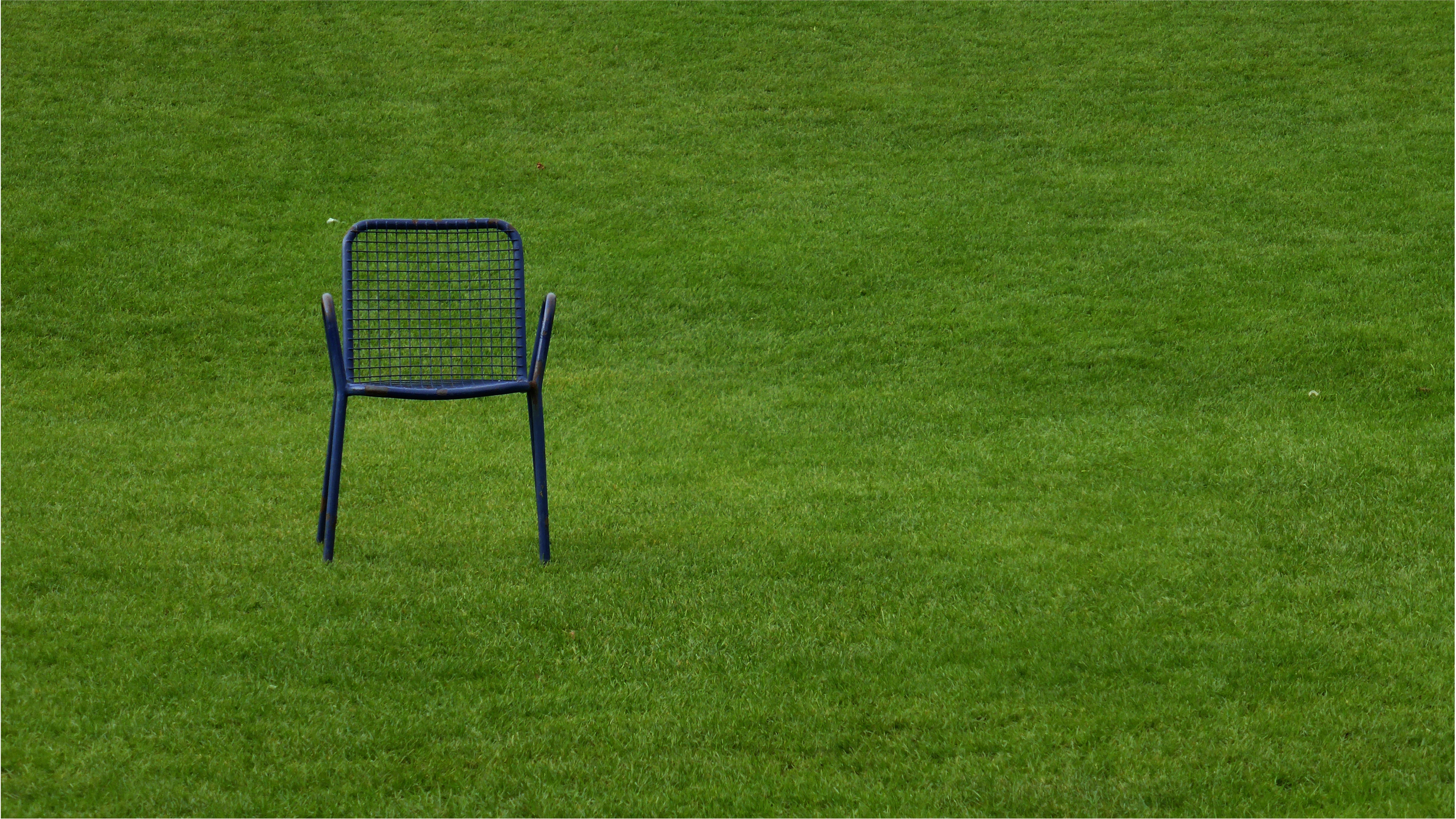 Fotos gratis : planta, prado, asiento, solo, verde, pastar, descanso ...