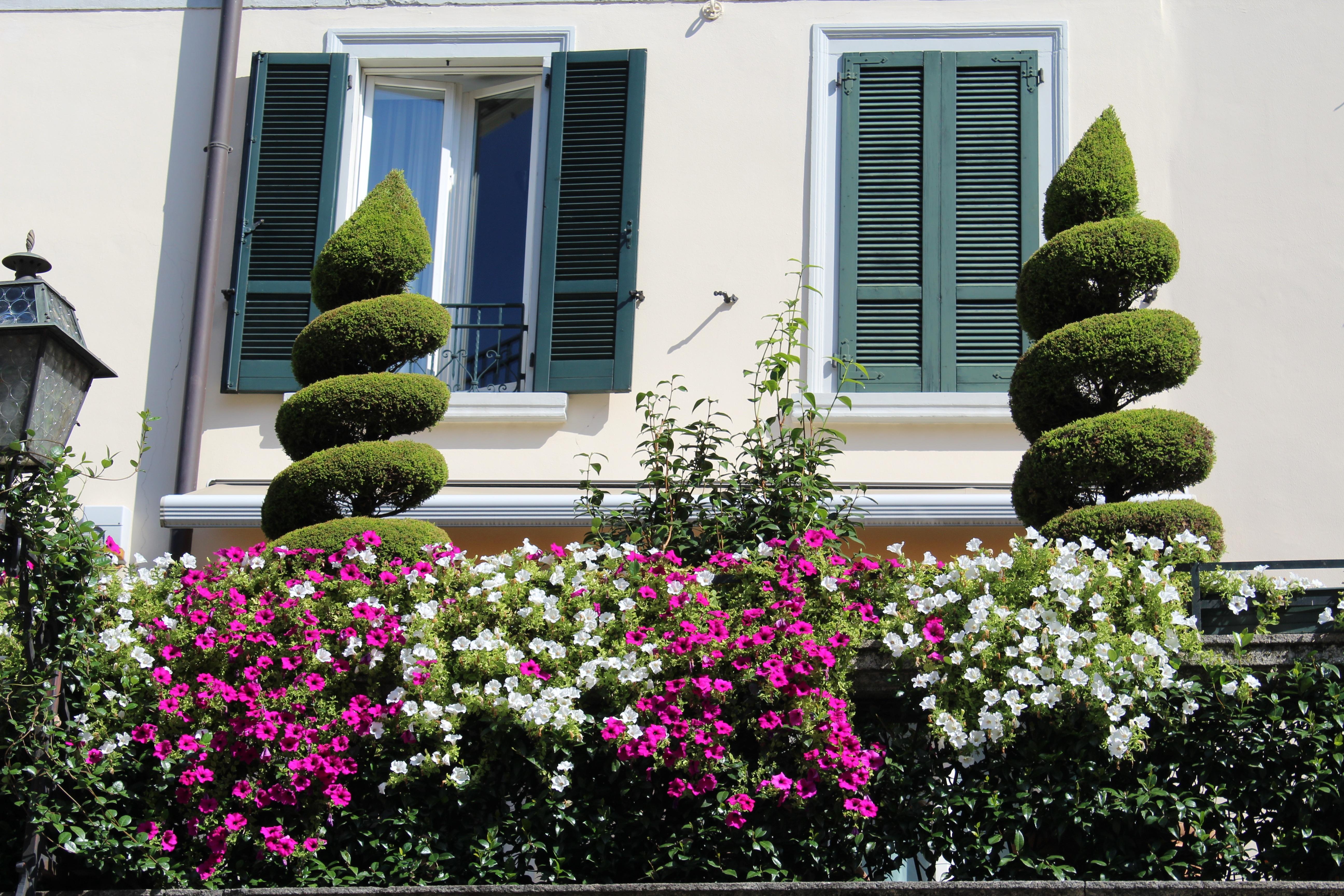 Images gratuites herbe plante pelouse villa maison for Plant de villa