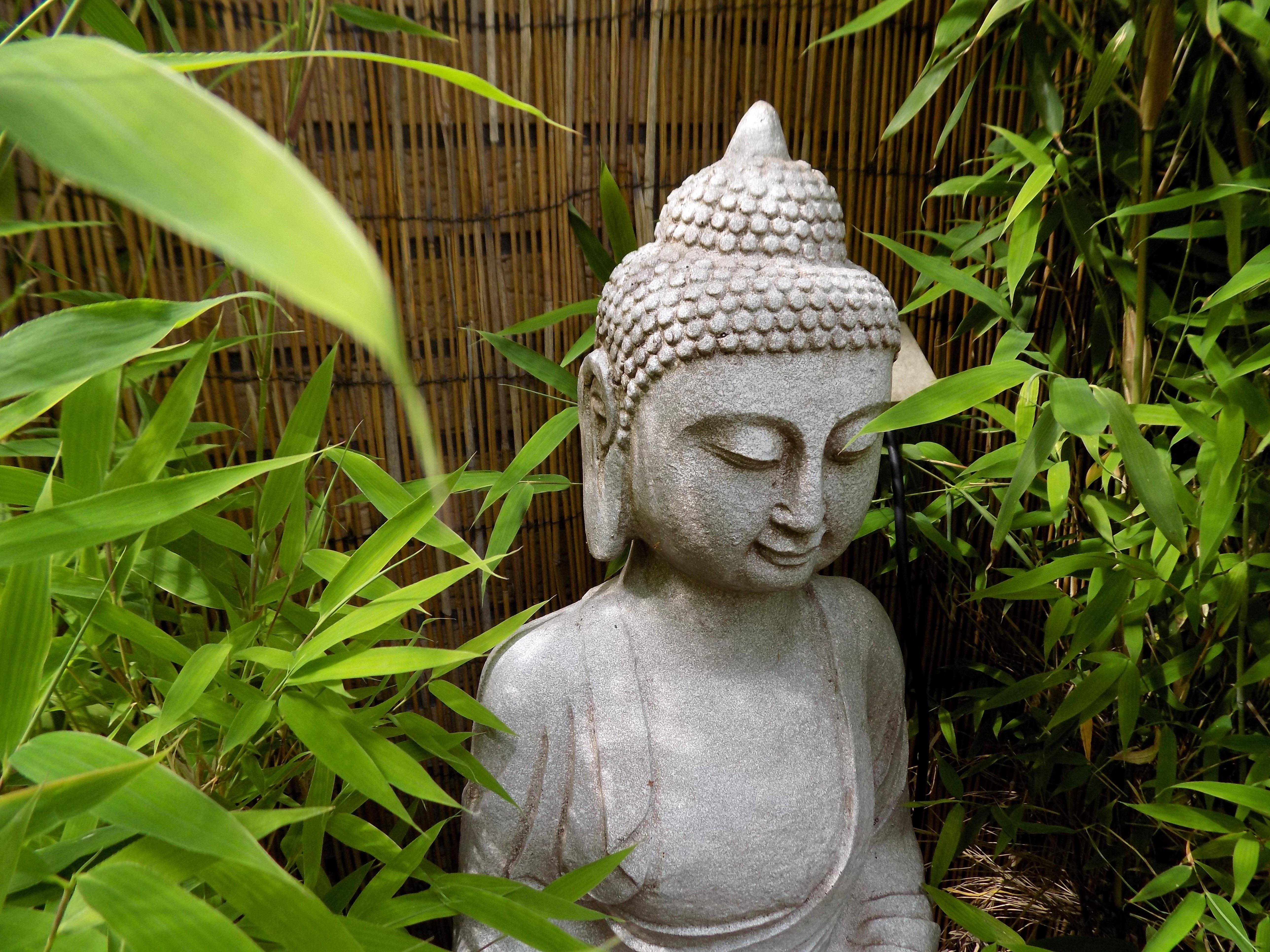free images grass plant leaf flower monument statue. Black Bedroom Furniture Sets. Home Design Ideas