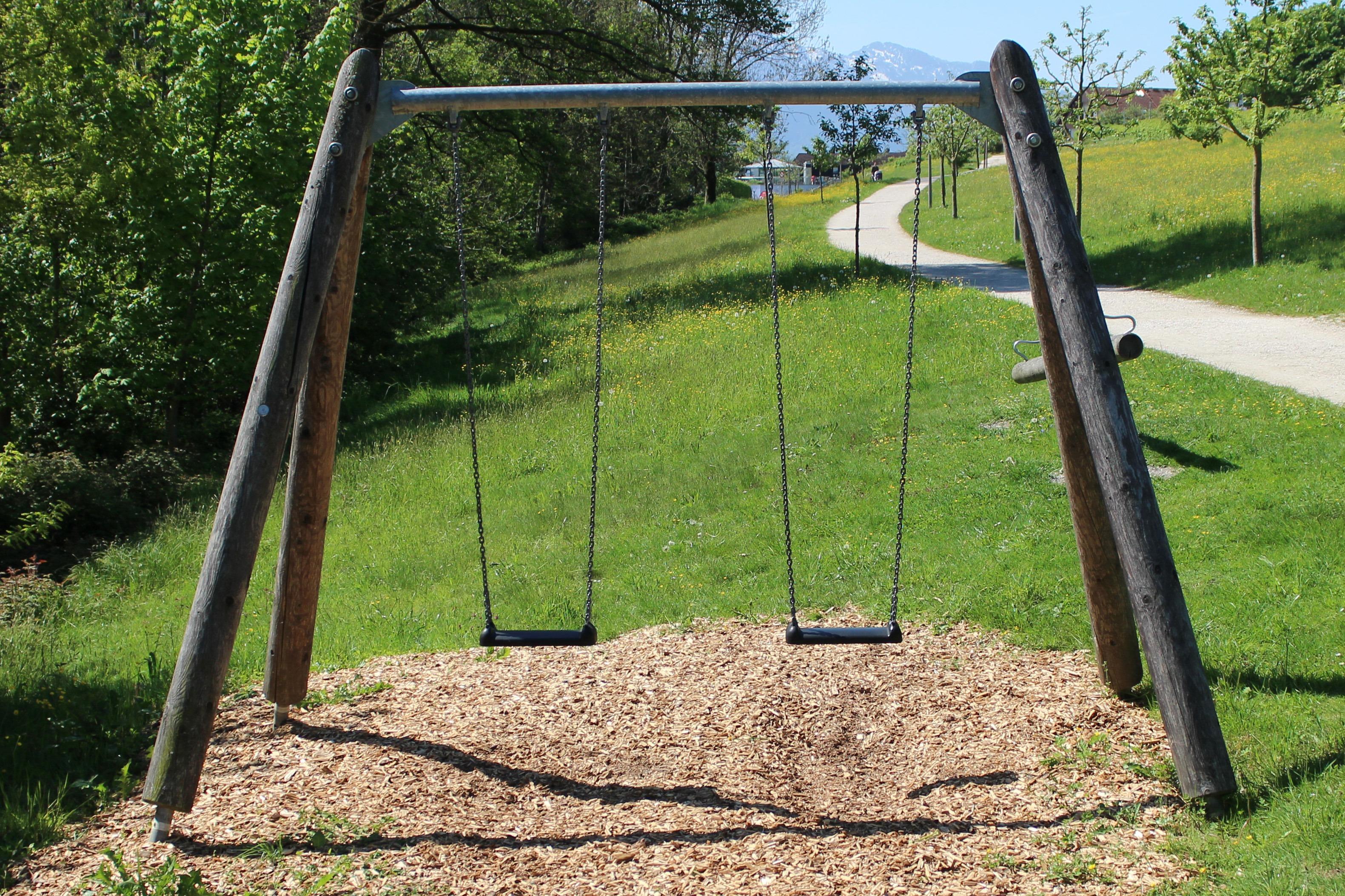 Images gratuites herbe roche pelouse arri re cour for Balancoire exterieur