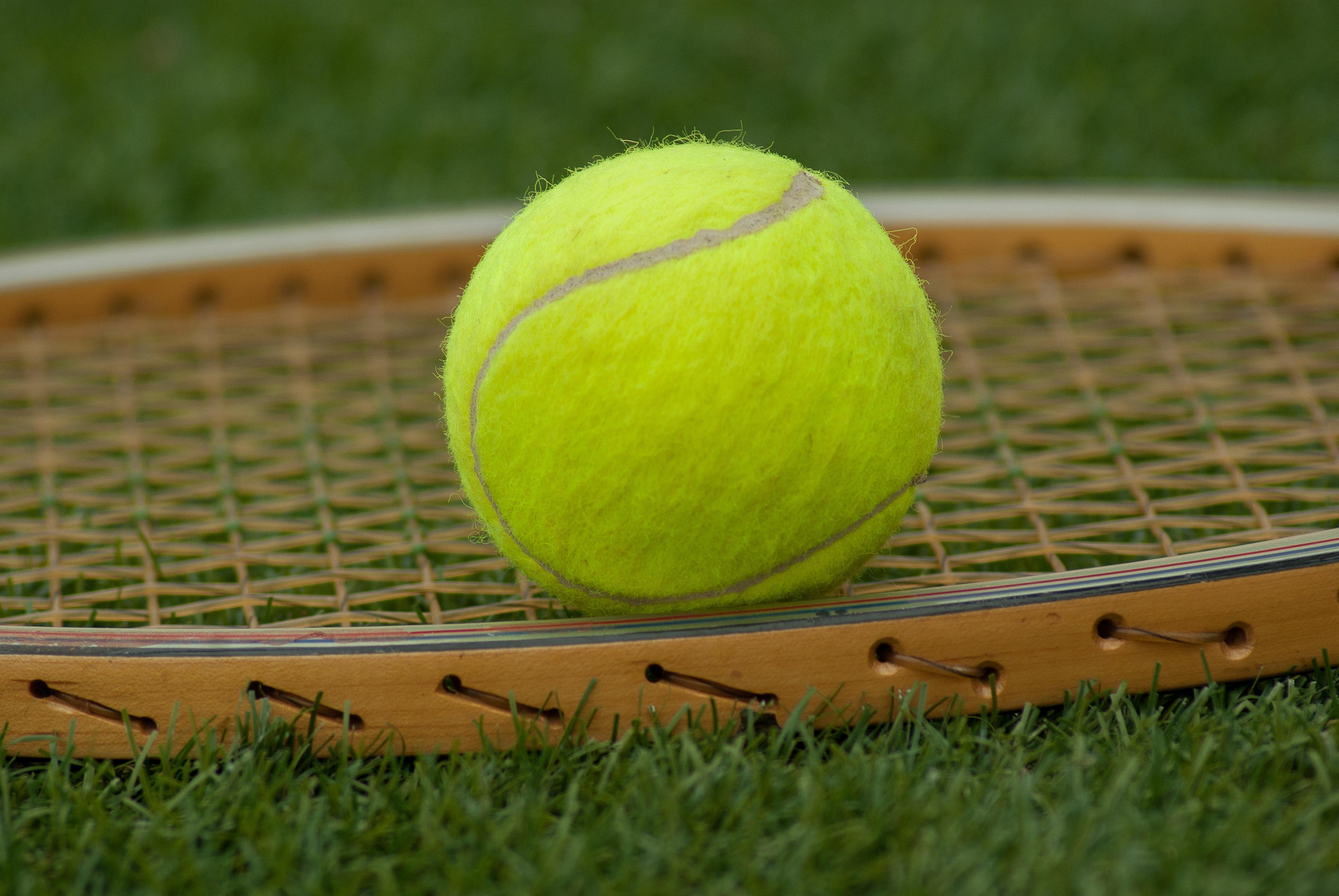 fc2e82e8 gress sport grønn gul sportsutstyr tennis nett ball rekkert tennisball  tennisracket tilbehør