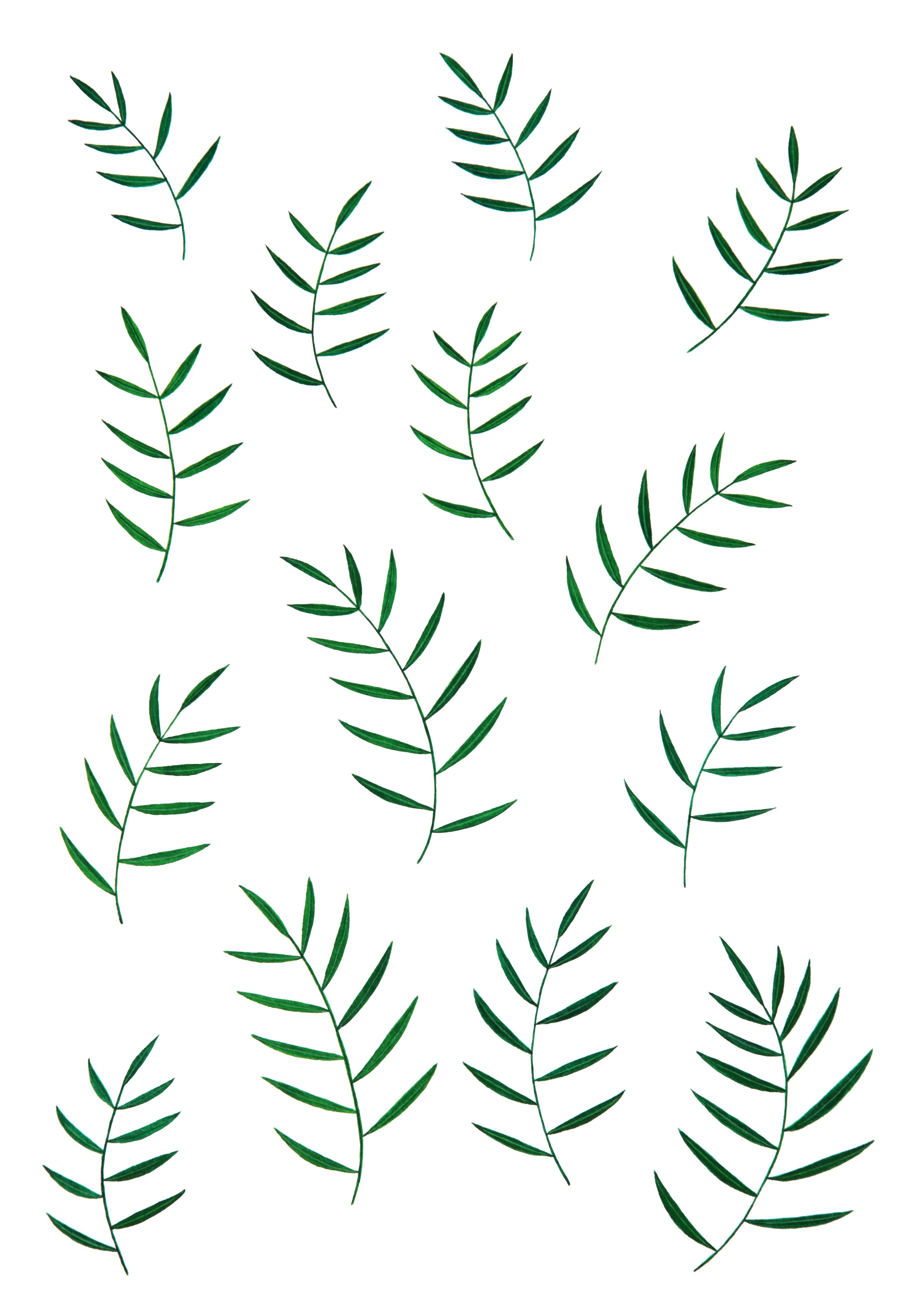 Images Gratuites Vert Feuilles La Nature Feuille Modele