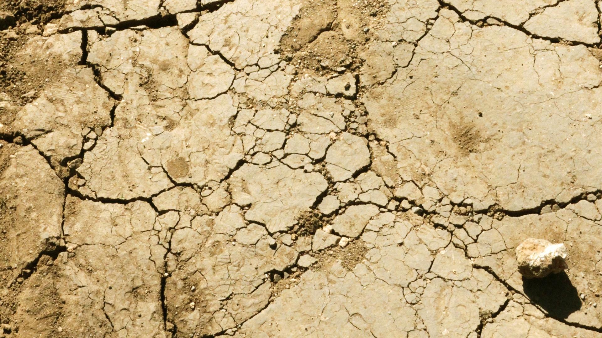 free images desert dry soil crack earth disaster