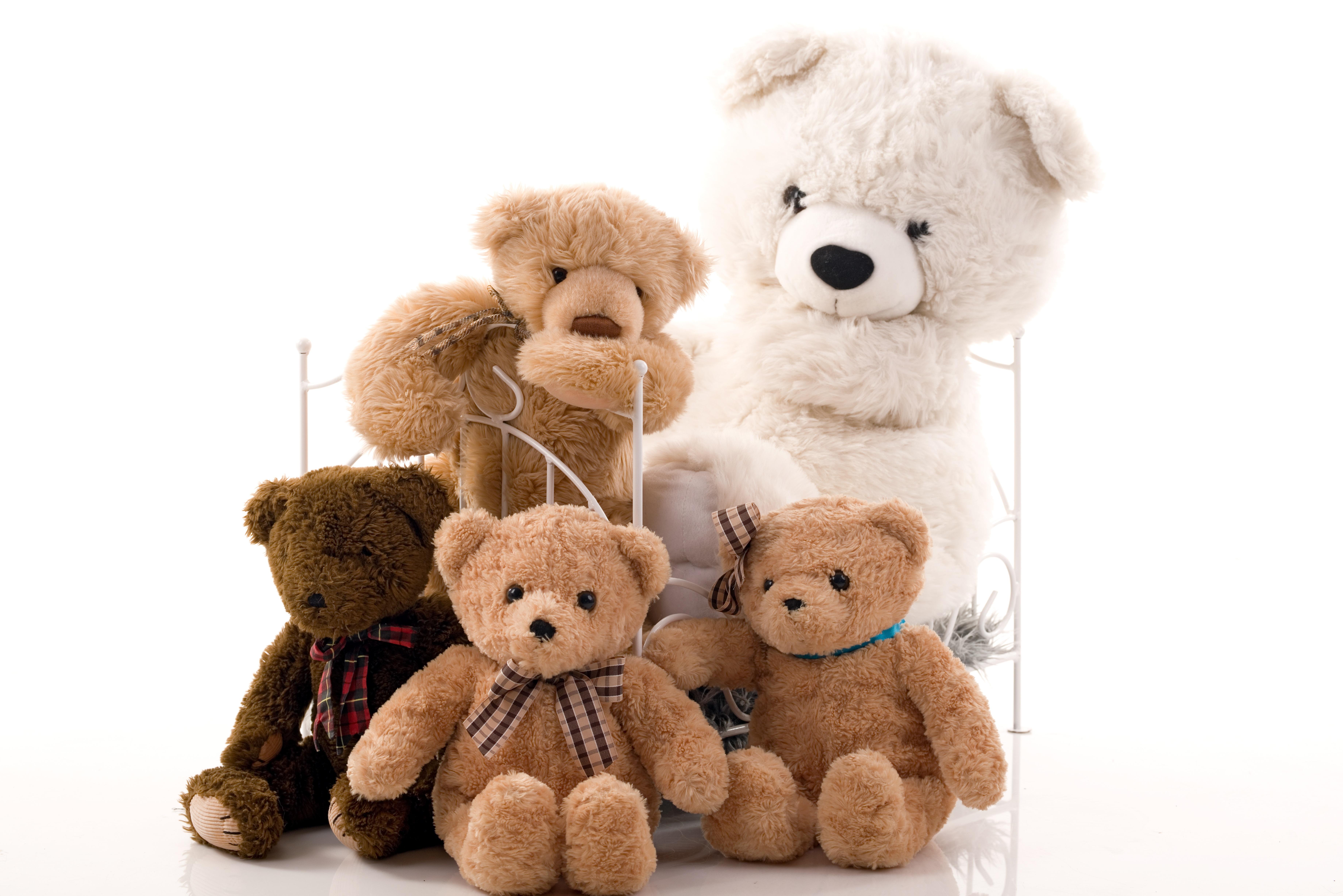 Kostenlose foto : Gruppe, Weiß, Studio, braun, Spielzeug, Teddybär ...