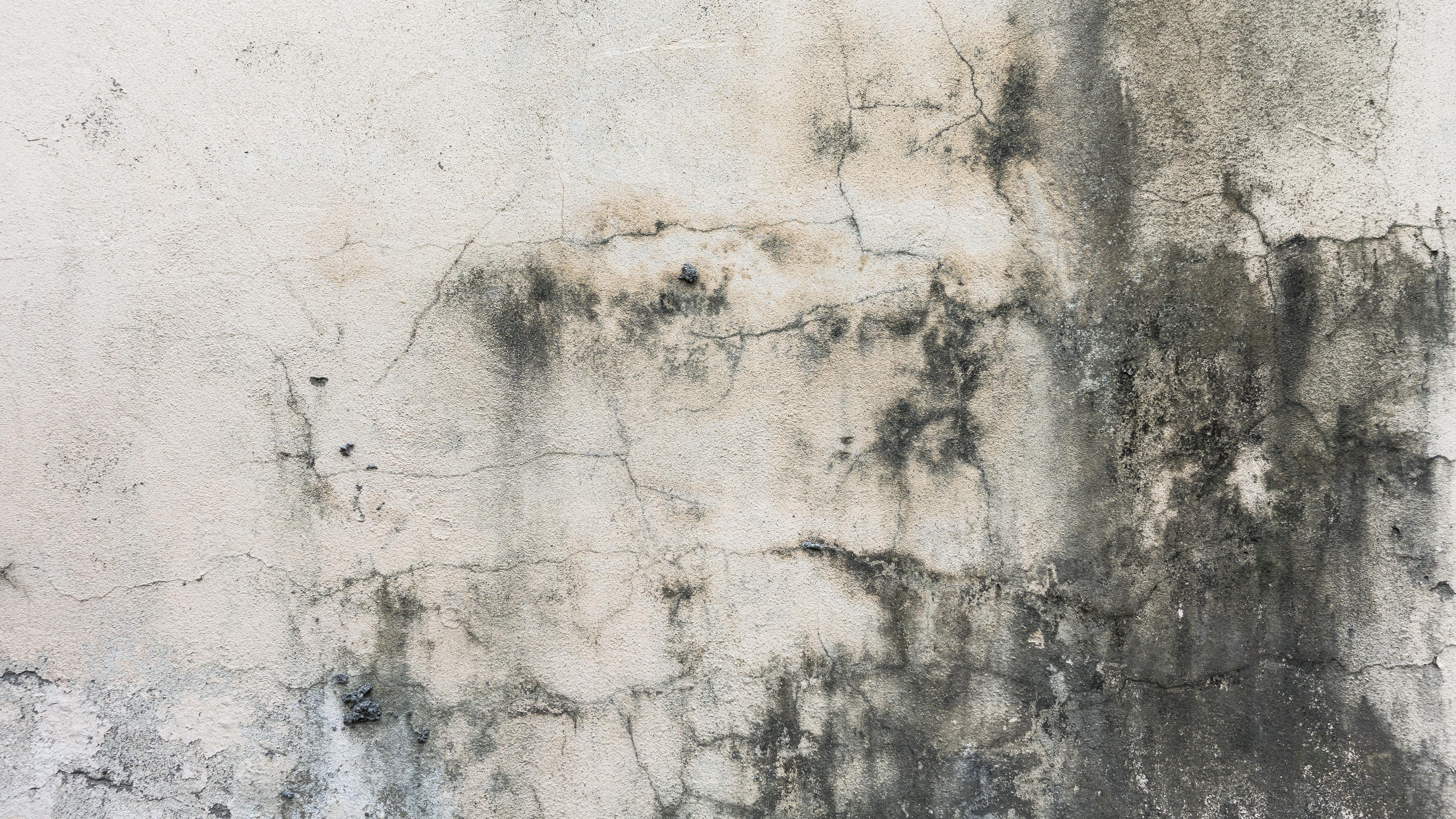 Banco De Imagens Sujo Textura Parede Rachadura Sujo