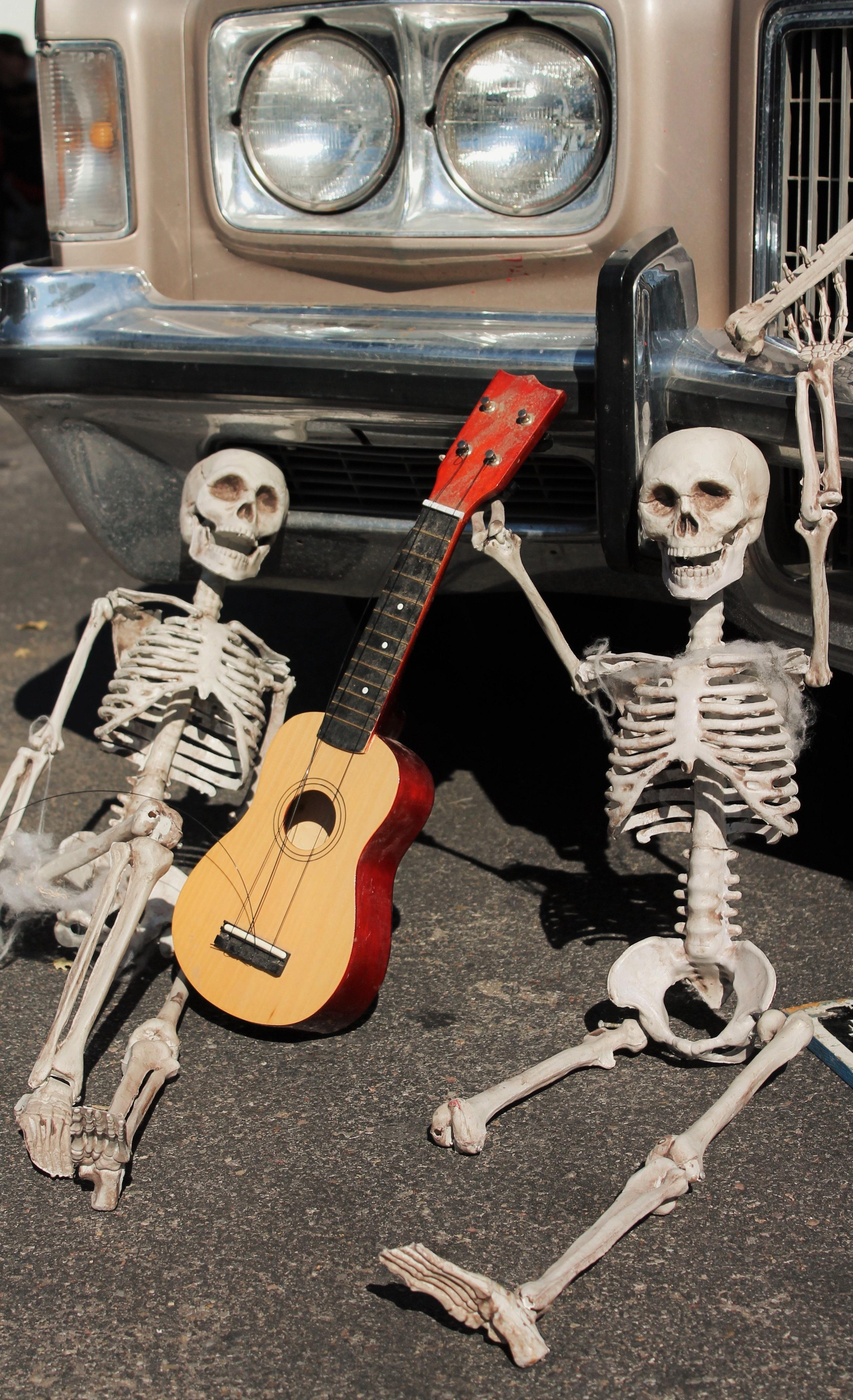 free images spooky celebration musician death gothic bone musical instrument festive. Black Bedroom Furniture Sets. Home Design Ideas