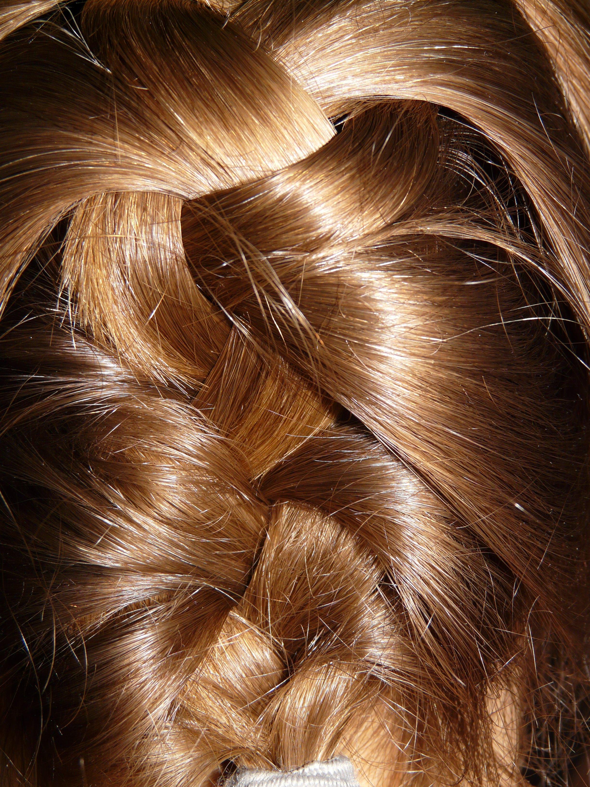 Hair Brown Hairstyle Braid Long Hair Weave Head Blond Brown Hair Plait Hair  Coloring Chignon Layered