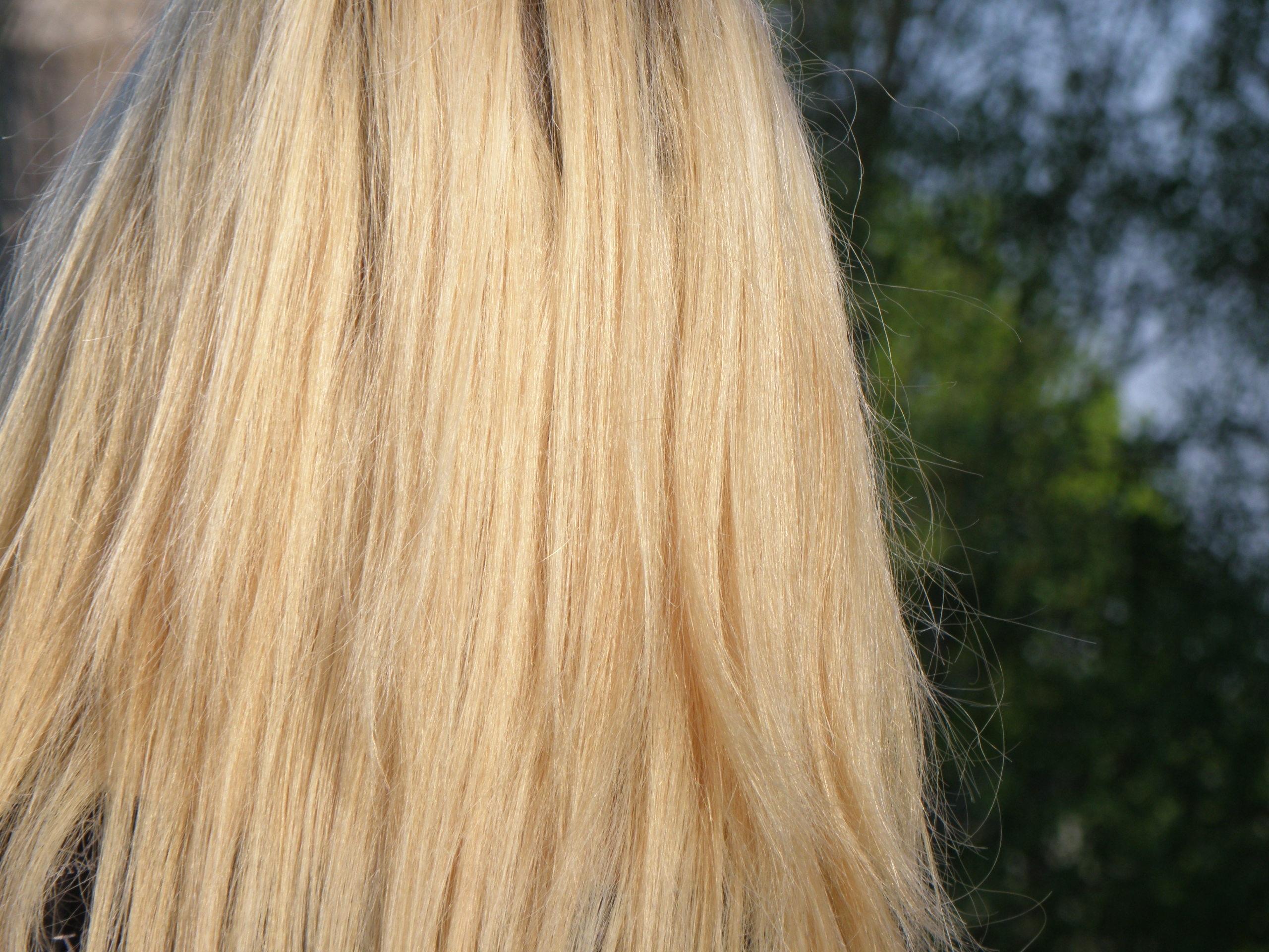 dlouhé vlasy blondýnka styk