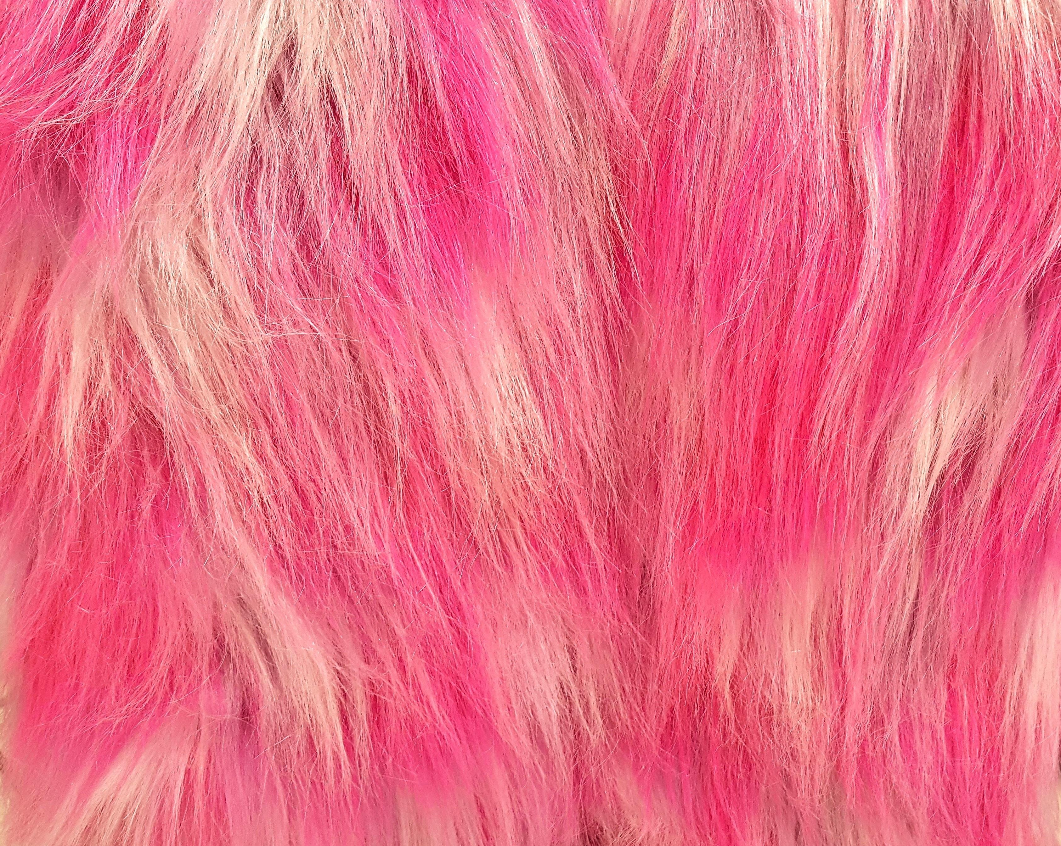 Fotos gratis : cabello, textura, púrpura, pétalo, hembra, pelaje ...