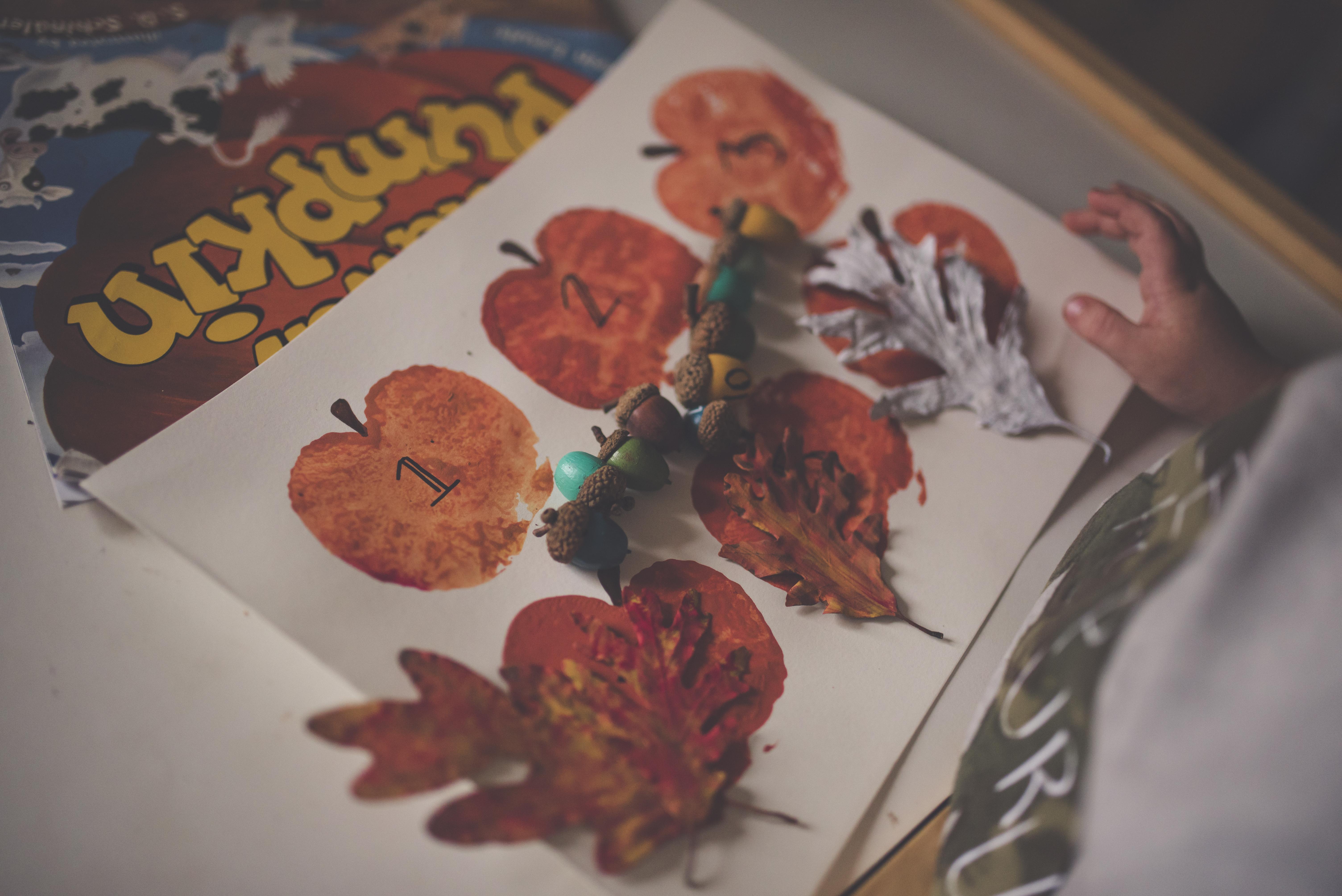 Kostenlose foto : Hand, Apfel, Person, Blume, Kind, Dekoration, rot ...