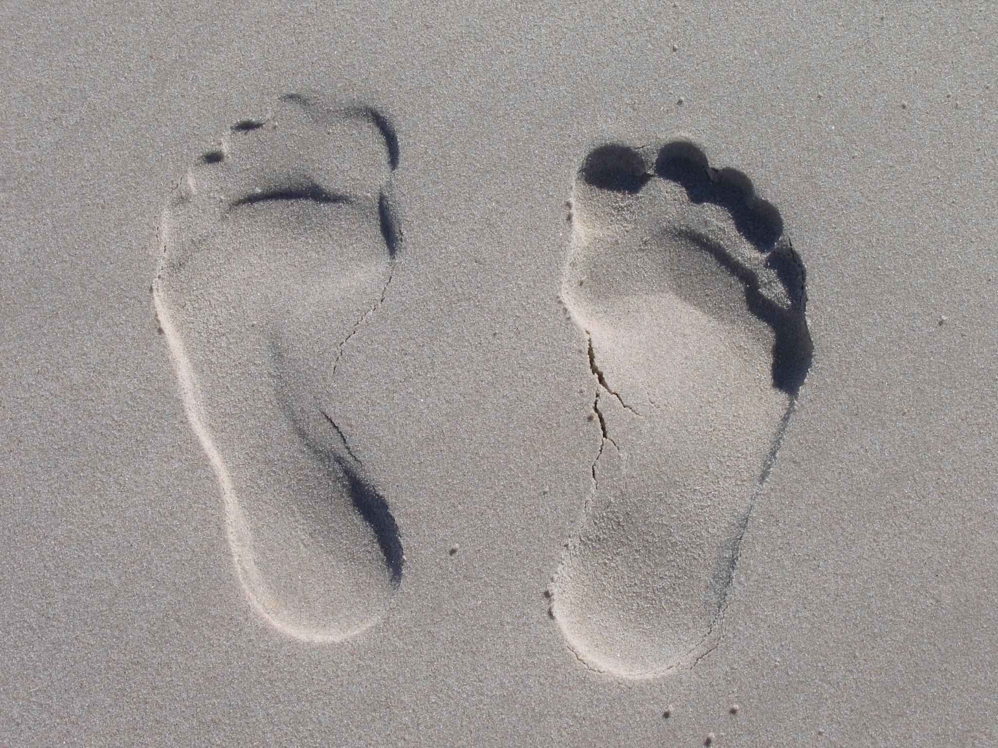 Gambar Tangan Laut Sepatu Putih Tapak Kaki Musim