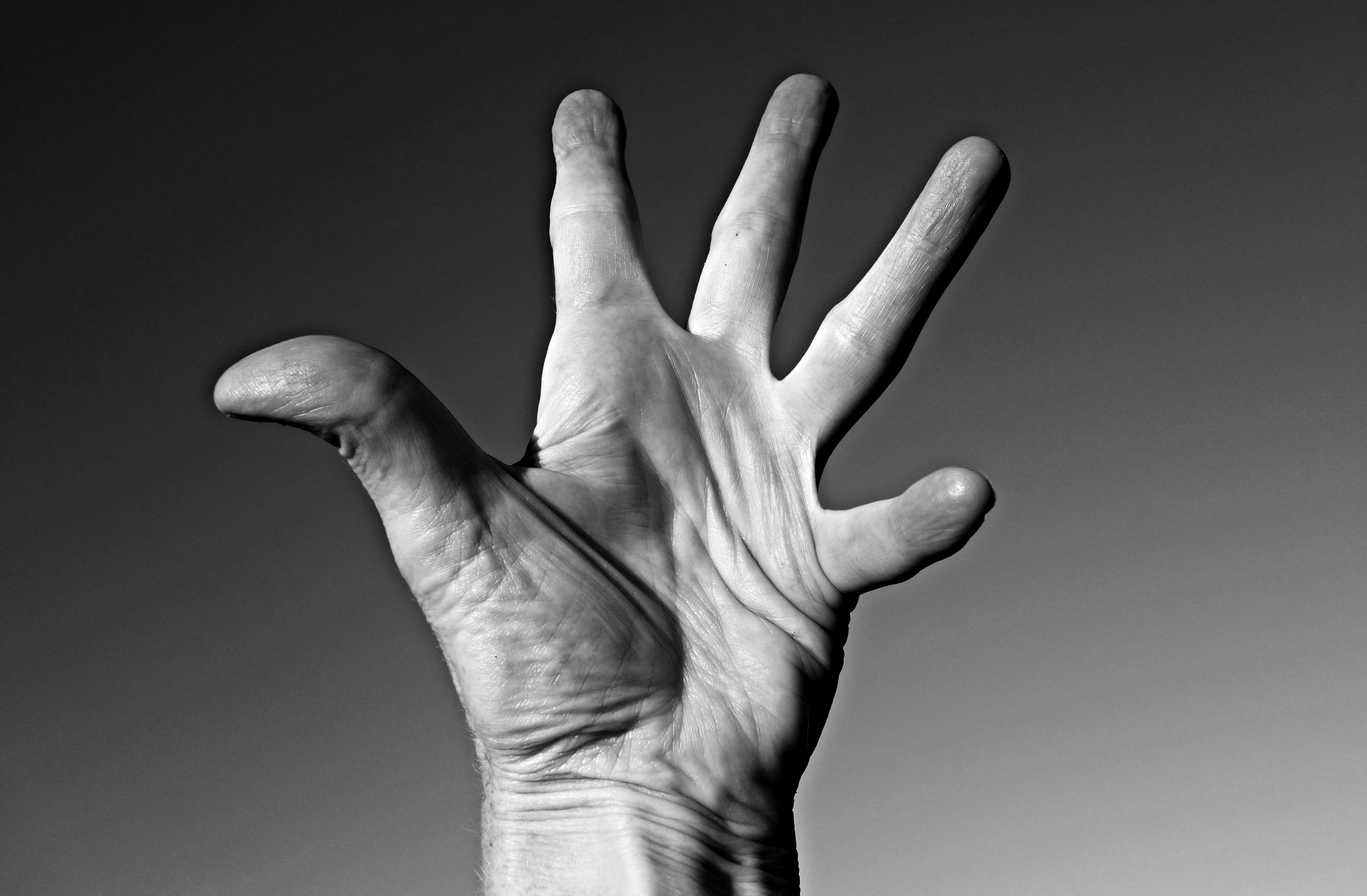 Assez Images Gratuites : main, noir et blanc, doigt, paume, Monochrome  PG46
