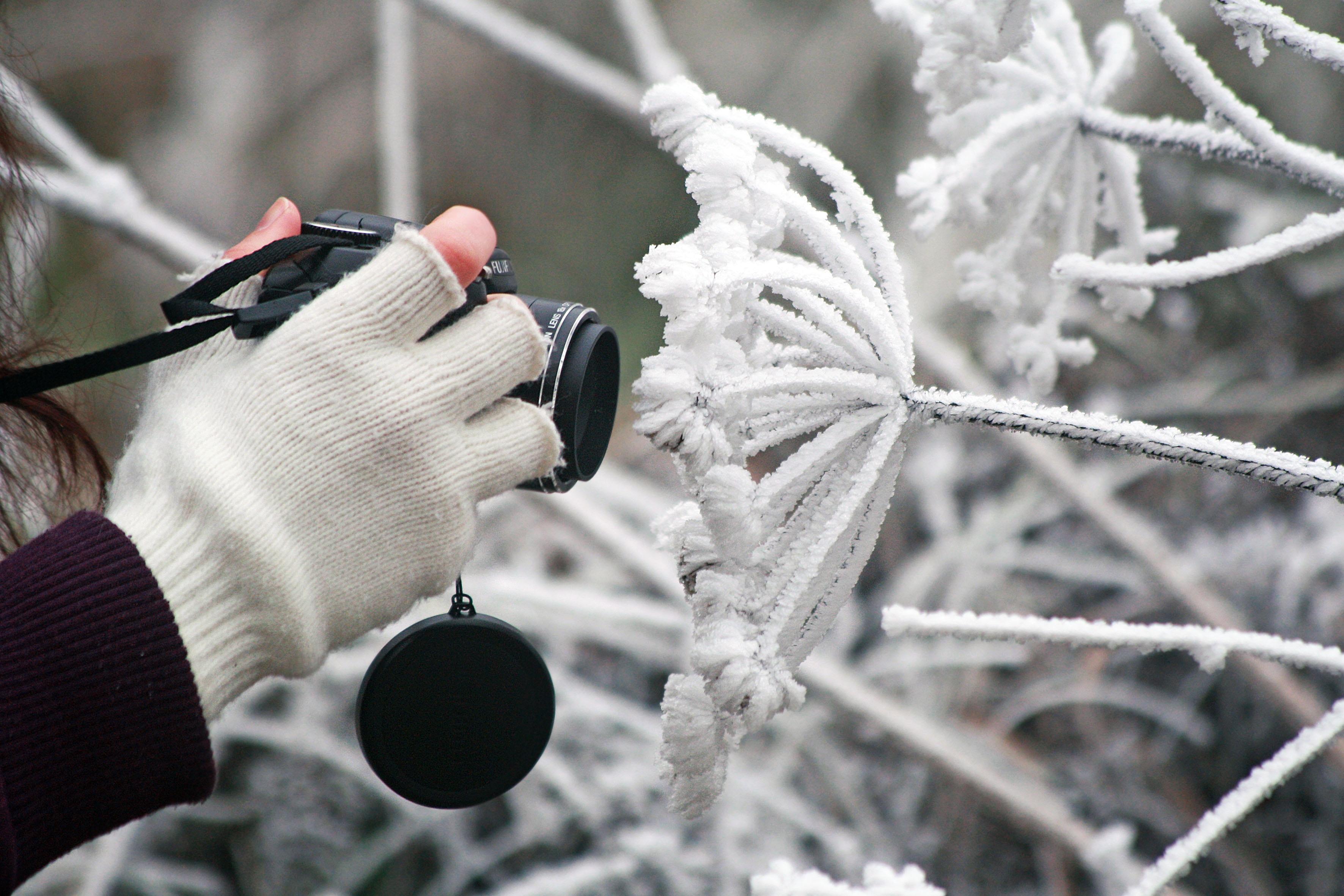 что японская использование фотоаппарата на морозе пришла