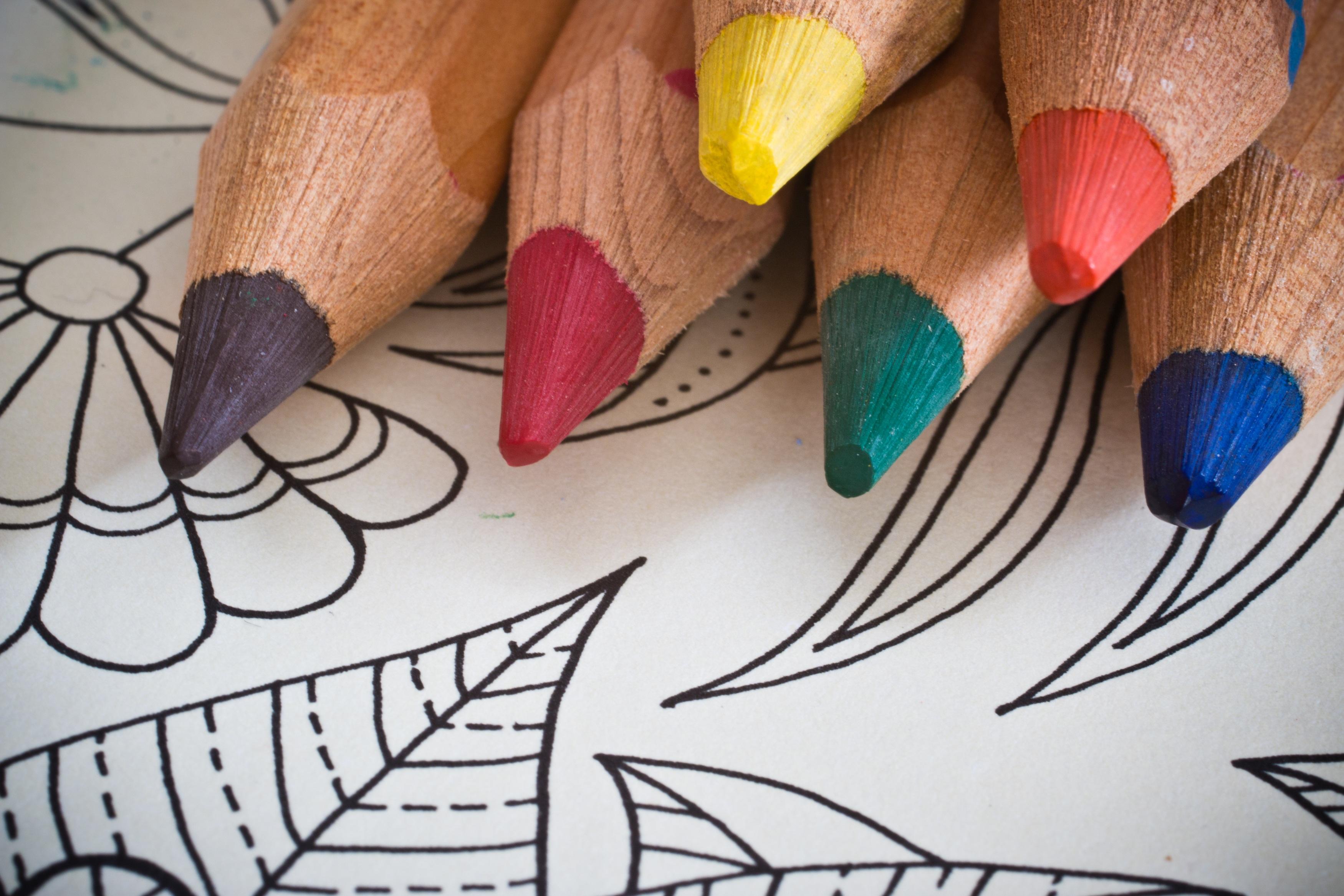 Fotos gratis : mano, creativo, patrón, dedo, color, pintar, uña ...