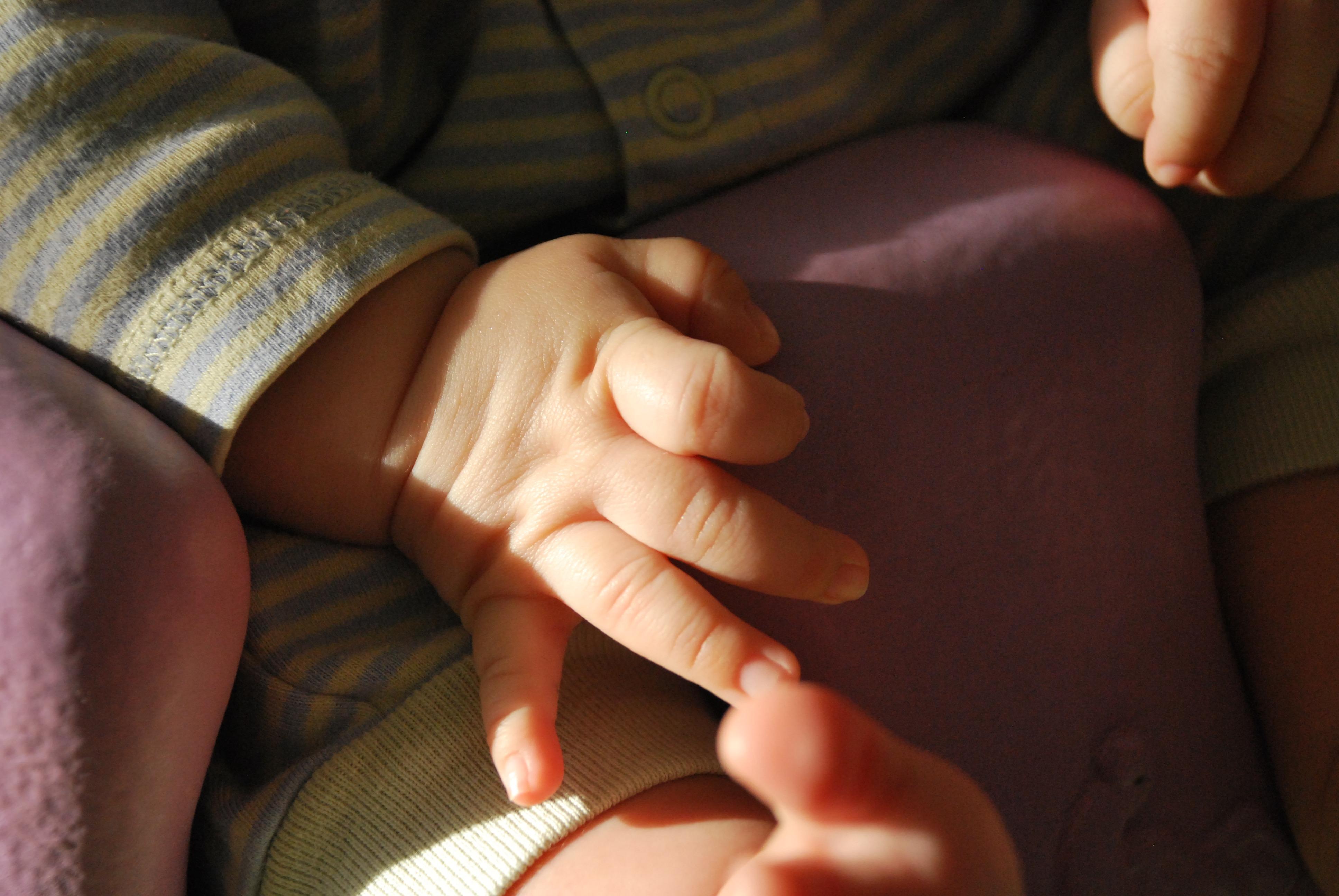 Родитель держит руку маленького ребенка Фото большого