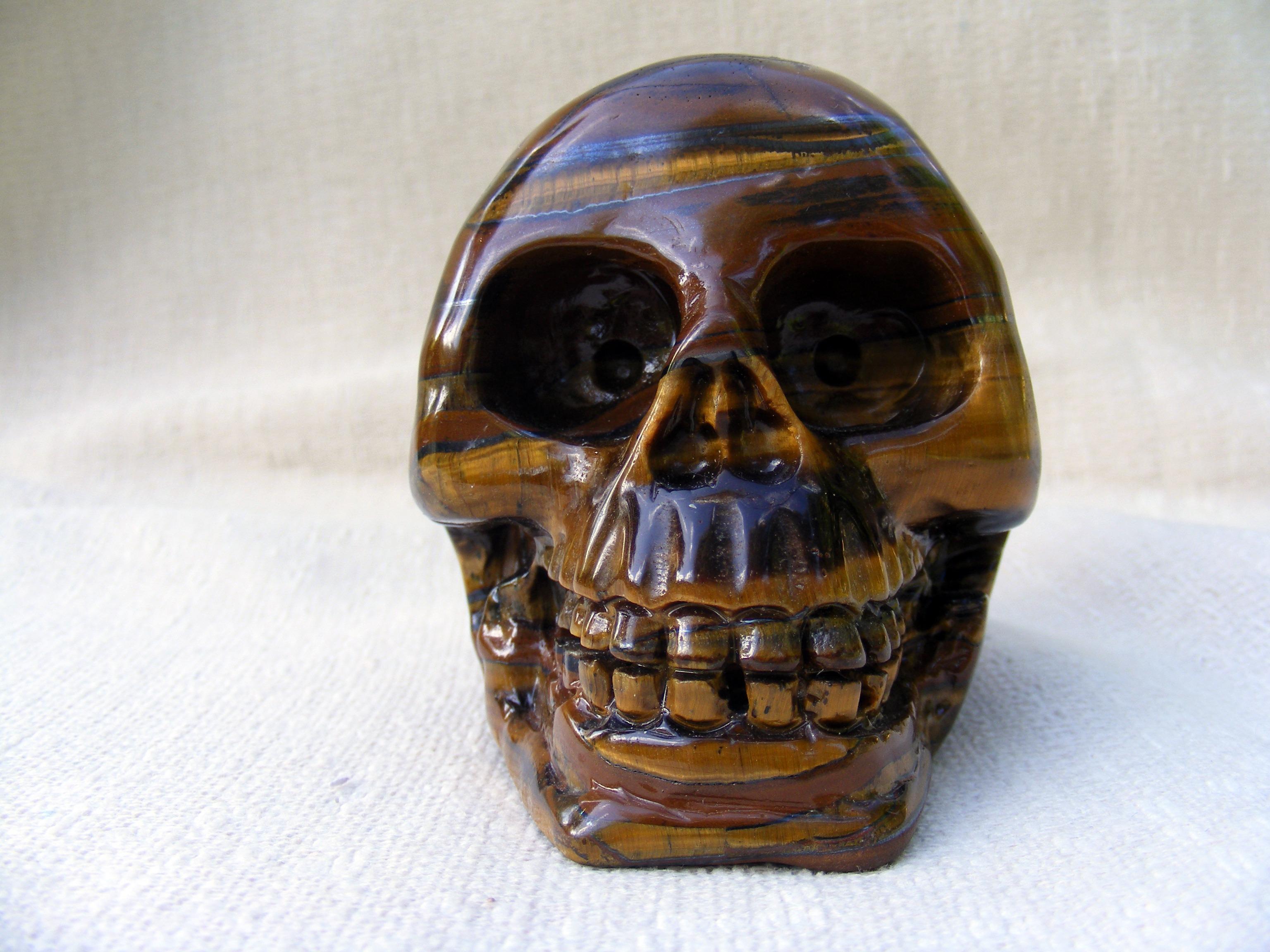 Free Images : hand, dead, death, skull, bone, sculpture, head ...
