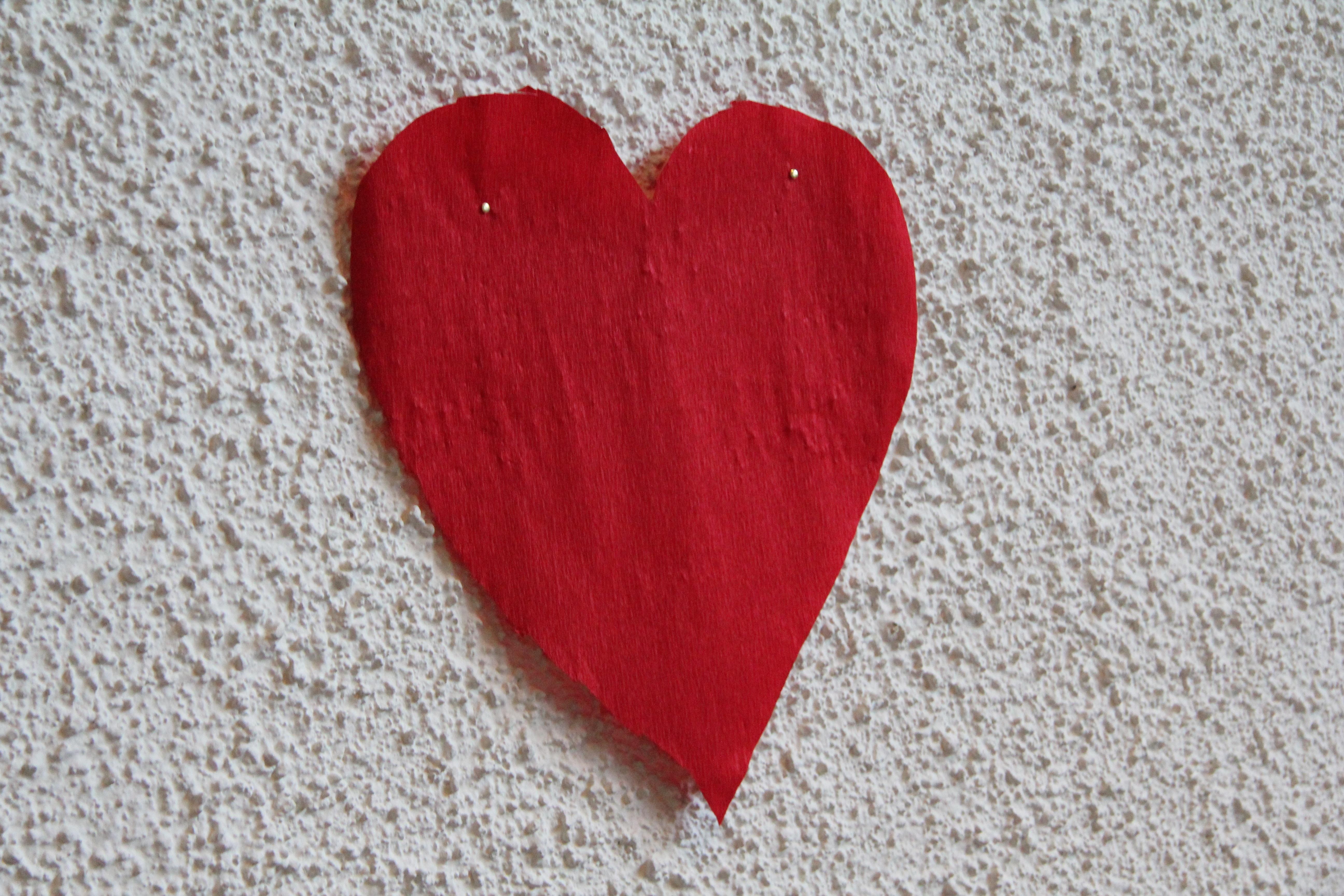 Images gratuites main fleur p tale amour c ur rouge - Images coeur gratuites ...