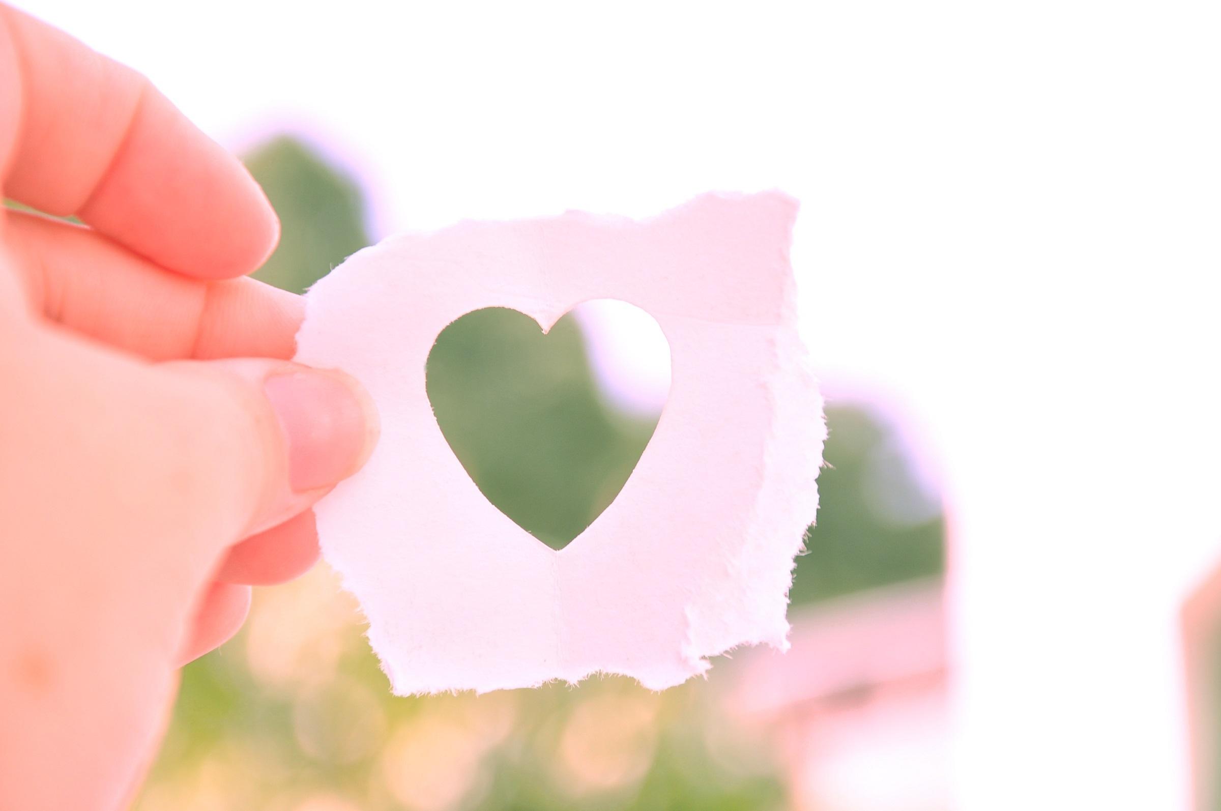 Kostenlose foto : Hand, Blume, Blütenblatt, Schild, Liebe, Herz ...