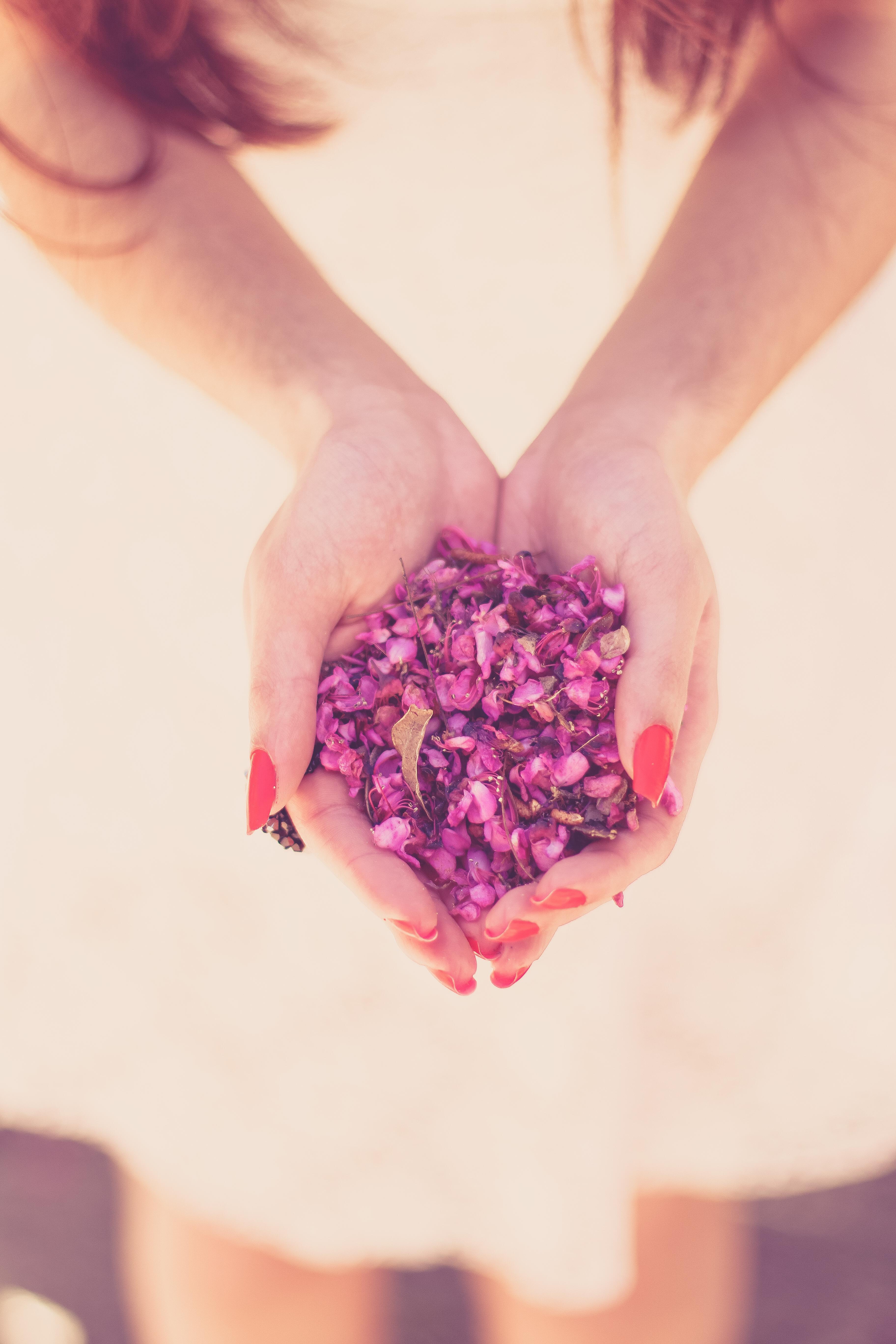 Девушка держит в руках цветы картинка