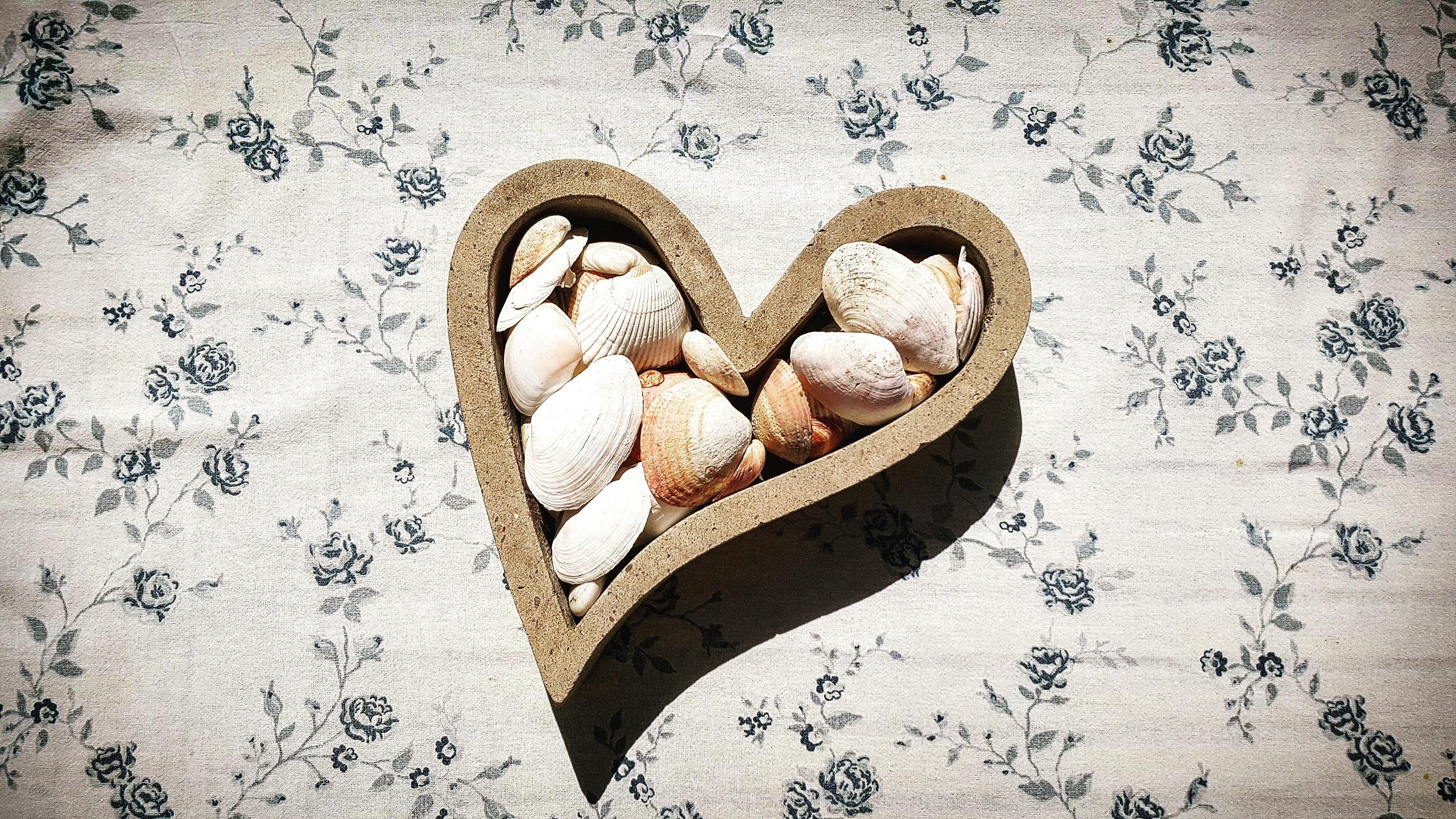 Images Gratuites Main Amour Cœur Aliments Corps Humain